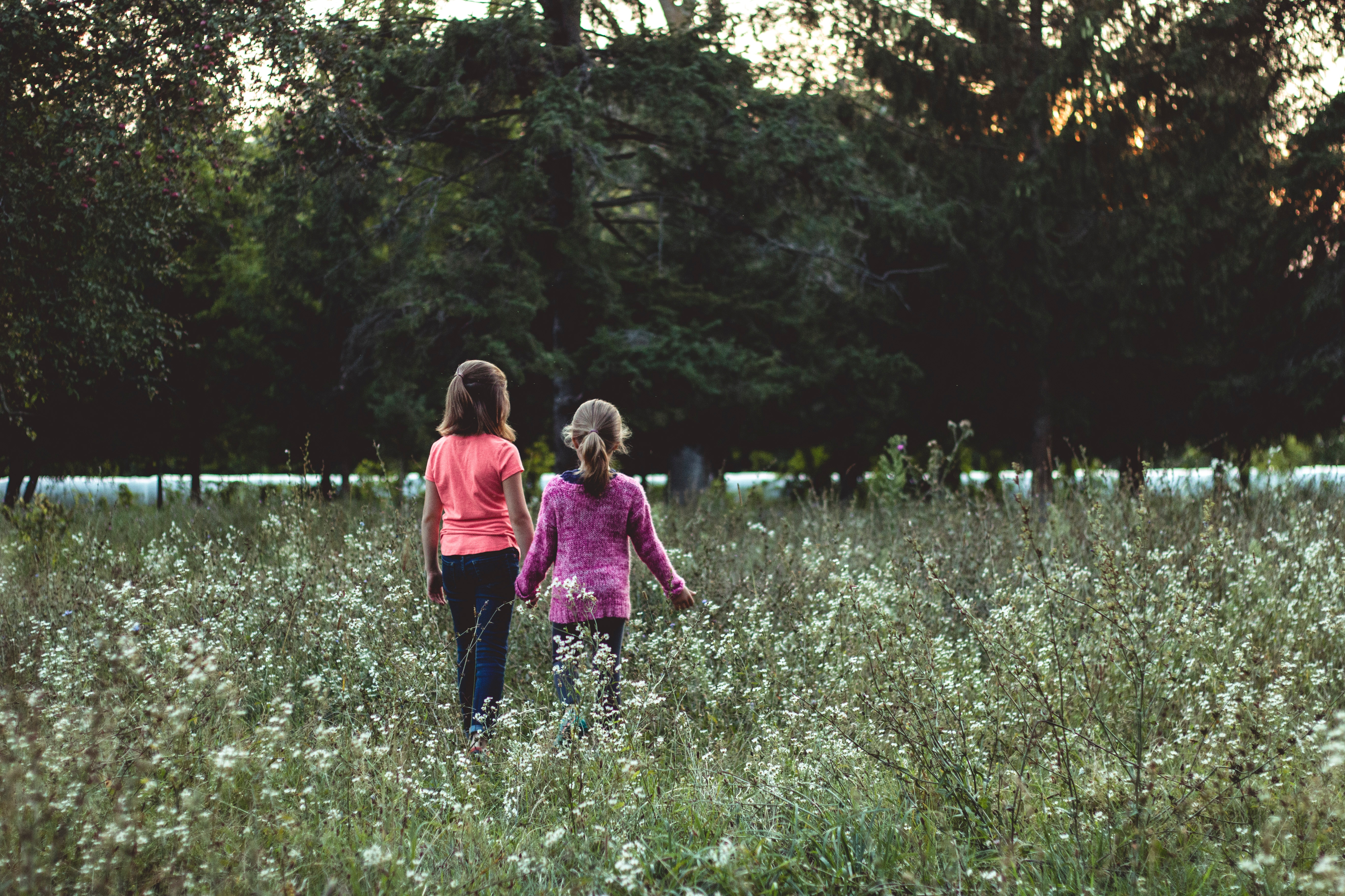 145947 download wallpaper Children, Miscellanea, Miscellaneous, Field, Stroll, Friends screensavers and pictures for free