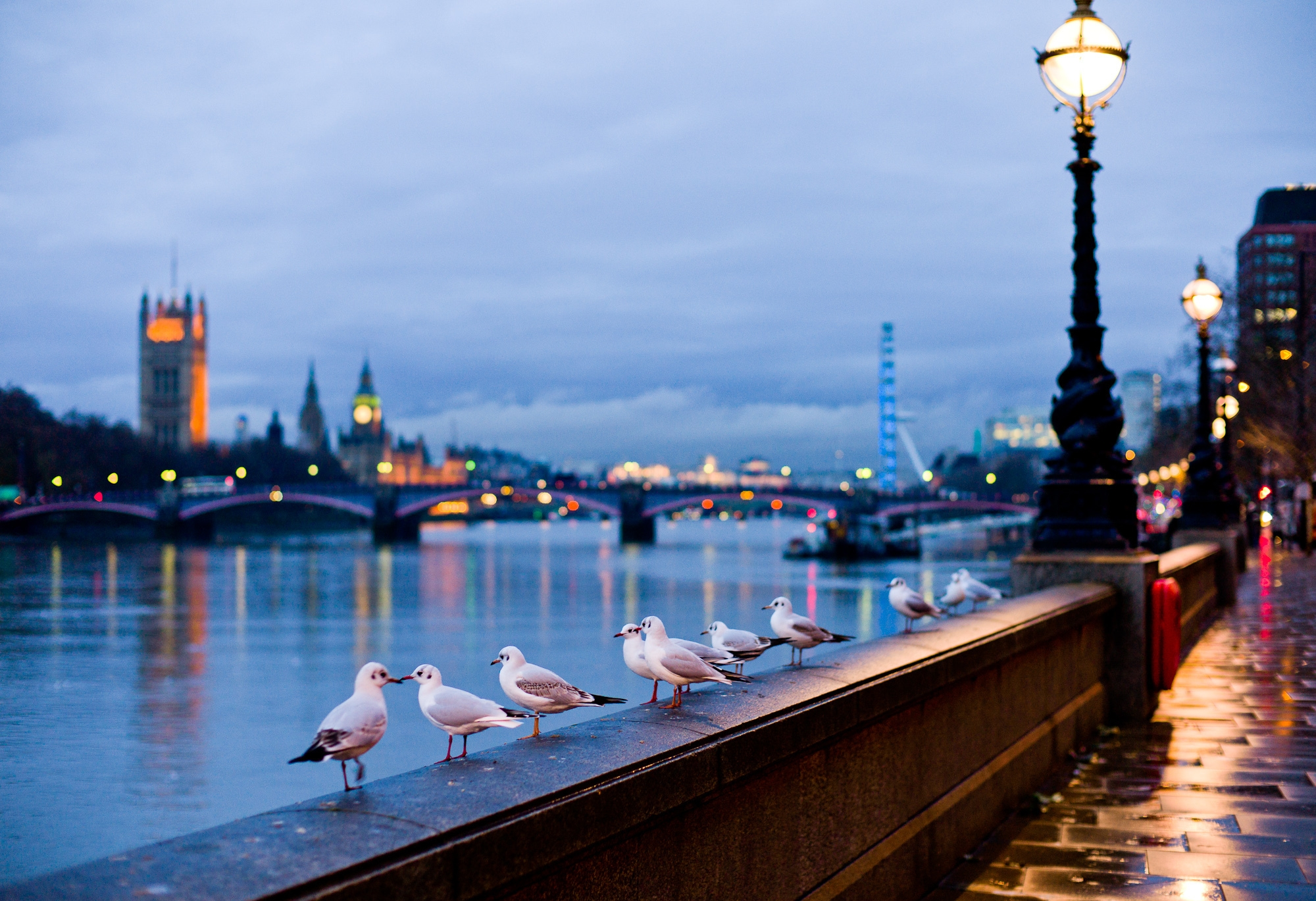 147035 download wallpaper Cities, Rivers, Seagulls, London, City, Shine, Light, Lamp, Street, Bokeh, Boquet, Lamps, England screensavers and pictures for free