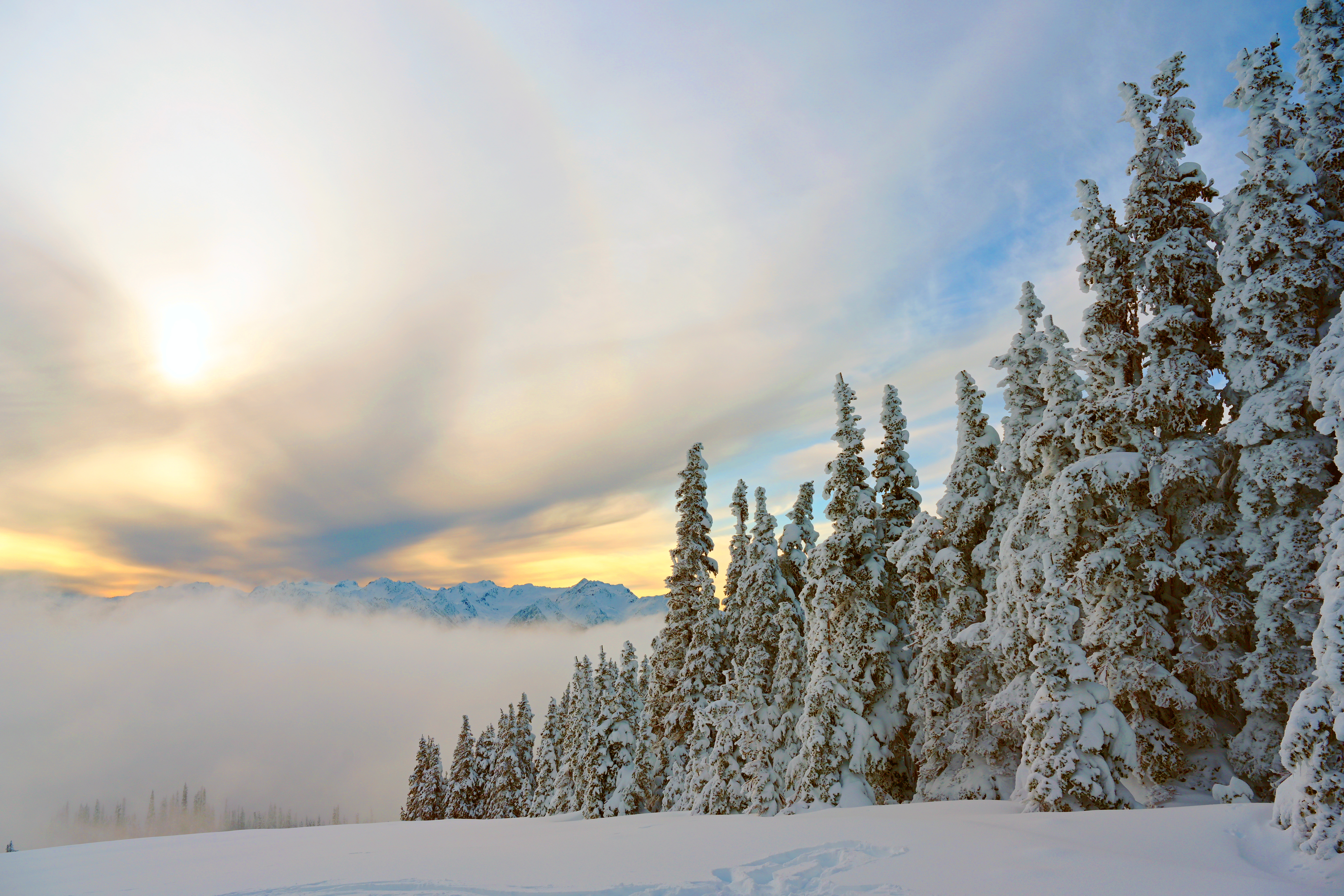 143931 download wallpaper Nature, Spruce, Fir, Trees, Snow, Snow Covered, Snowbound, Mountains screensavers and pictures for free