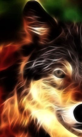 87047 download wallpaper Abstract, Wolf, Muzzle, Shine, Light, Lines screensavers and pictures for free