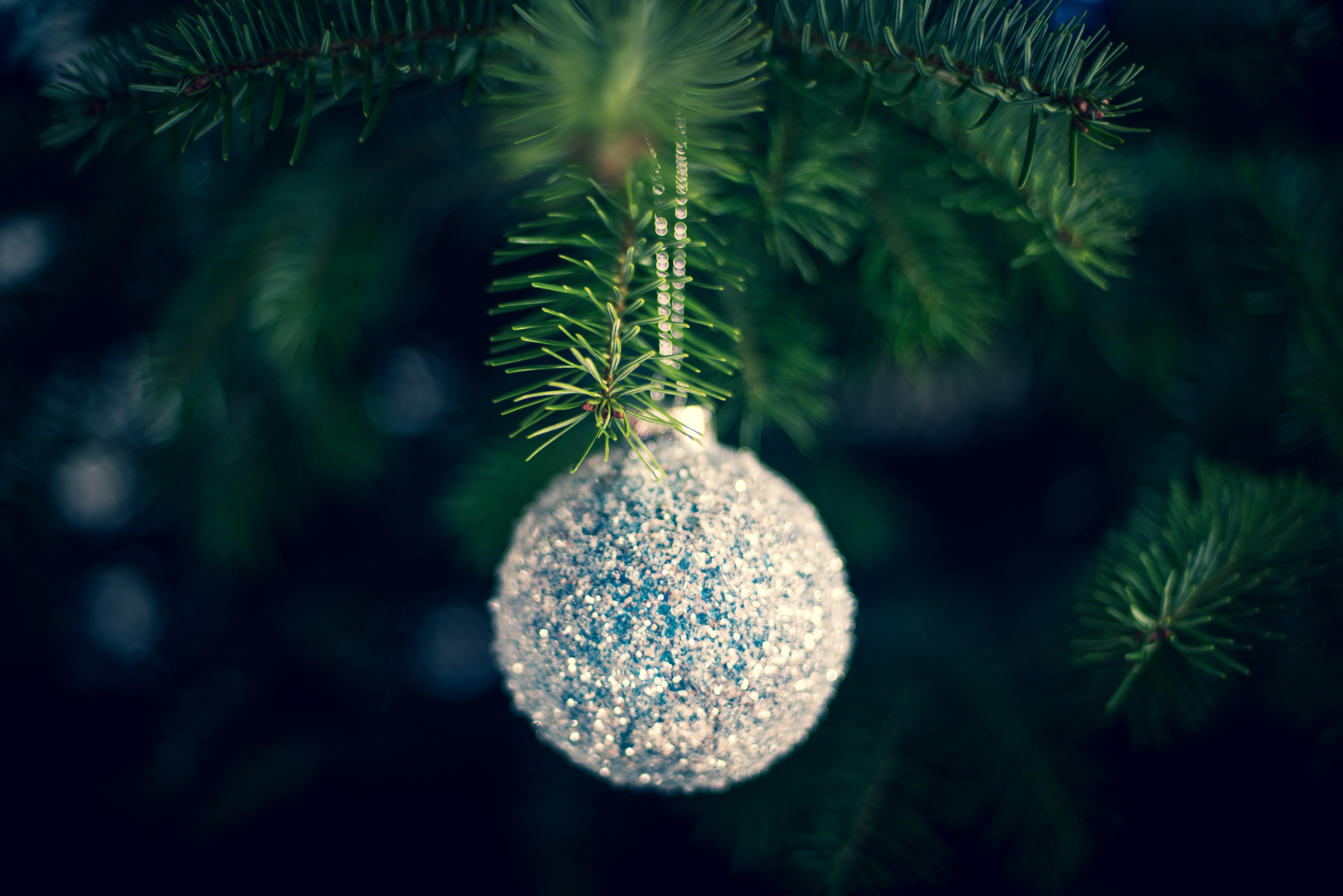 96331 Salvapantallas y fondos de pantalla Año Nuevo en tu teléfono. Descarga imágenes de Vacaciones, Bola, Pelota, Decoración, Árbol De Navidad, Año Nuevo, Navidad gratis