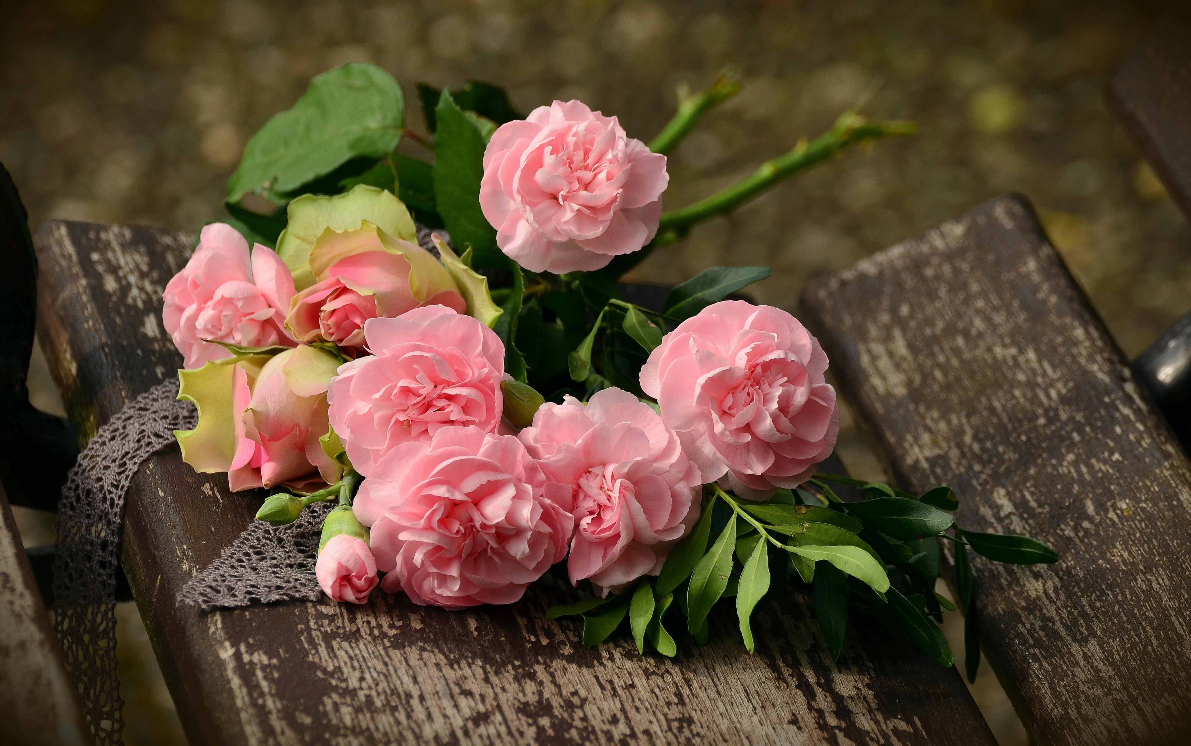 130034 скачать обои Гвоздики, Цветы, Букет, Розовый - заставки и картинки бесплатно
