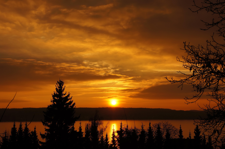 85496 télécharger le fond d'écran Rivières, Nature, Arbres, Coucher De Soleil, Sky - économiseurs d'écran et images gratuitement