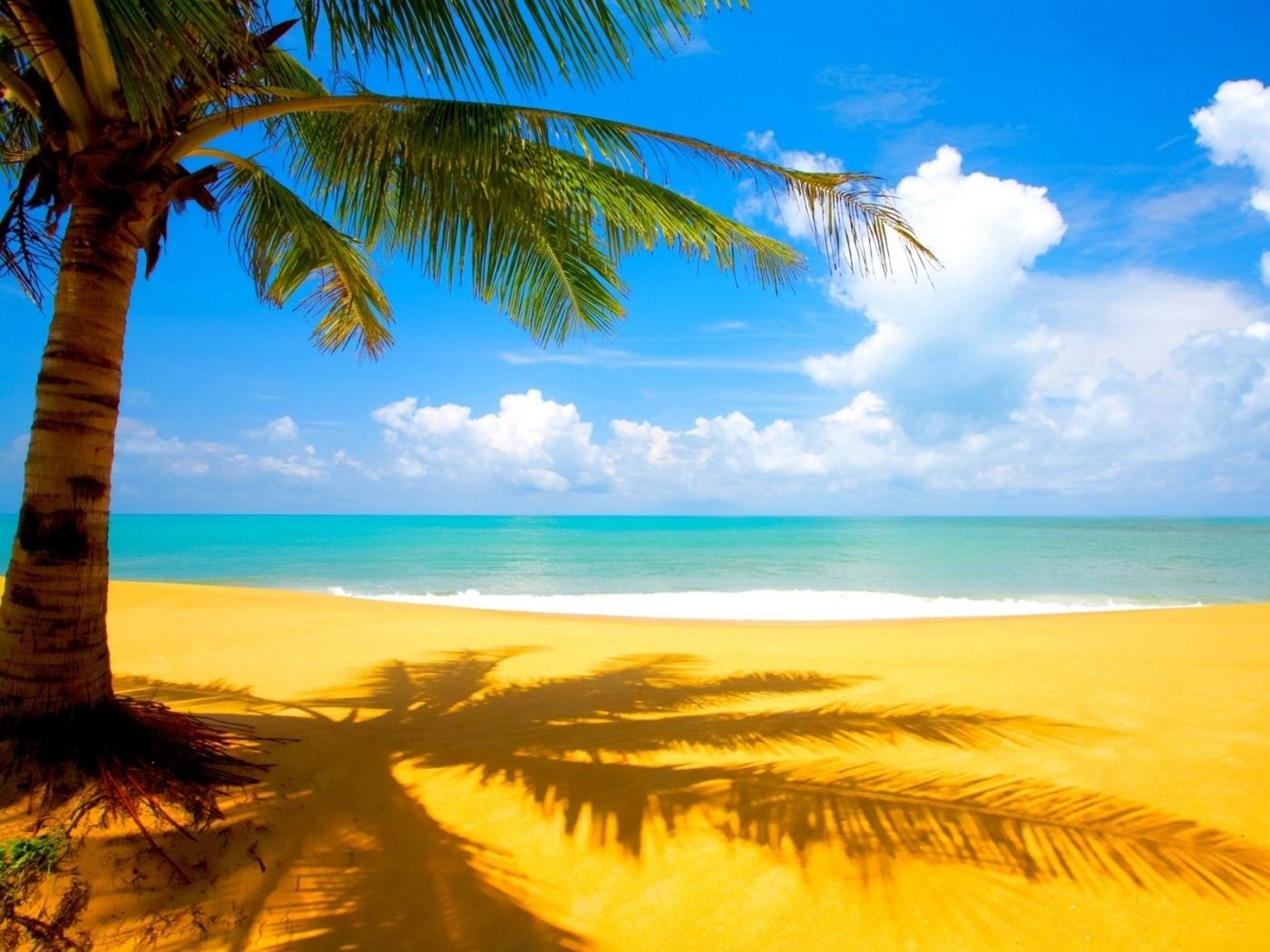 26423 скачать обои Пейзаж, Море, Облака, Пляж, Песок, Пальмы - заставки и картинки бесплатно