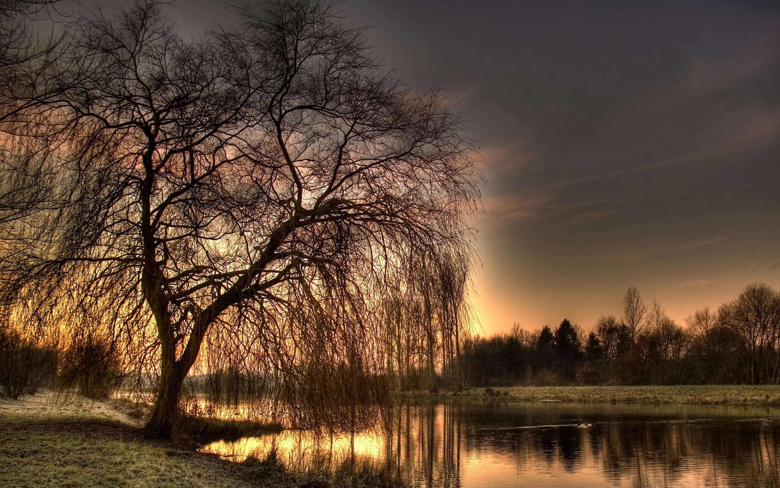 2469 Hintergrundbild herunterladen Landschaft, Flüsse, Bäume, Sunset, Fotokunst - Bildschirmschoner und Bilder kostenlos