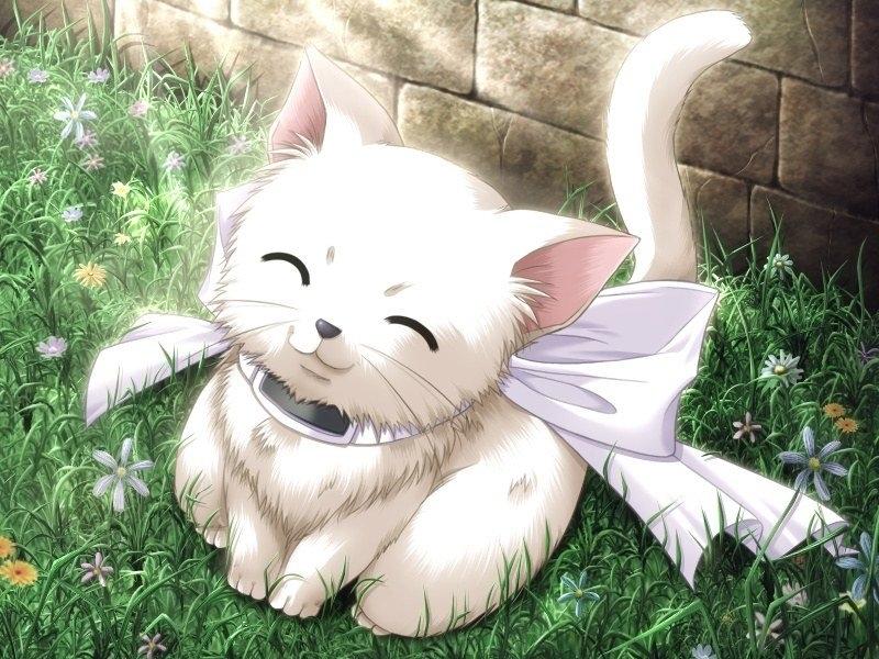 30399 économiseurs d'écran et fonds d'écran Anime sur votre téléphone. Téléchargez Anime, Chats images gratuitement