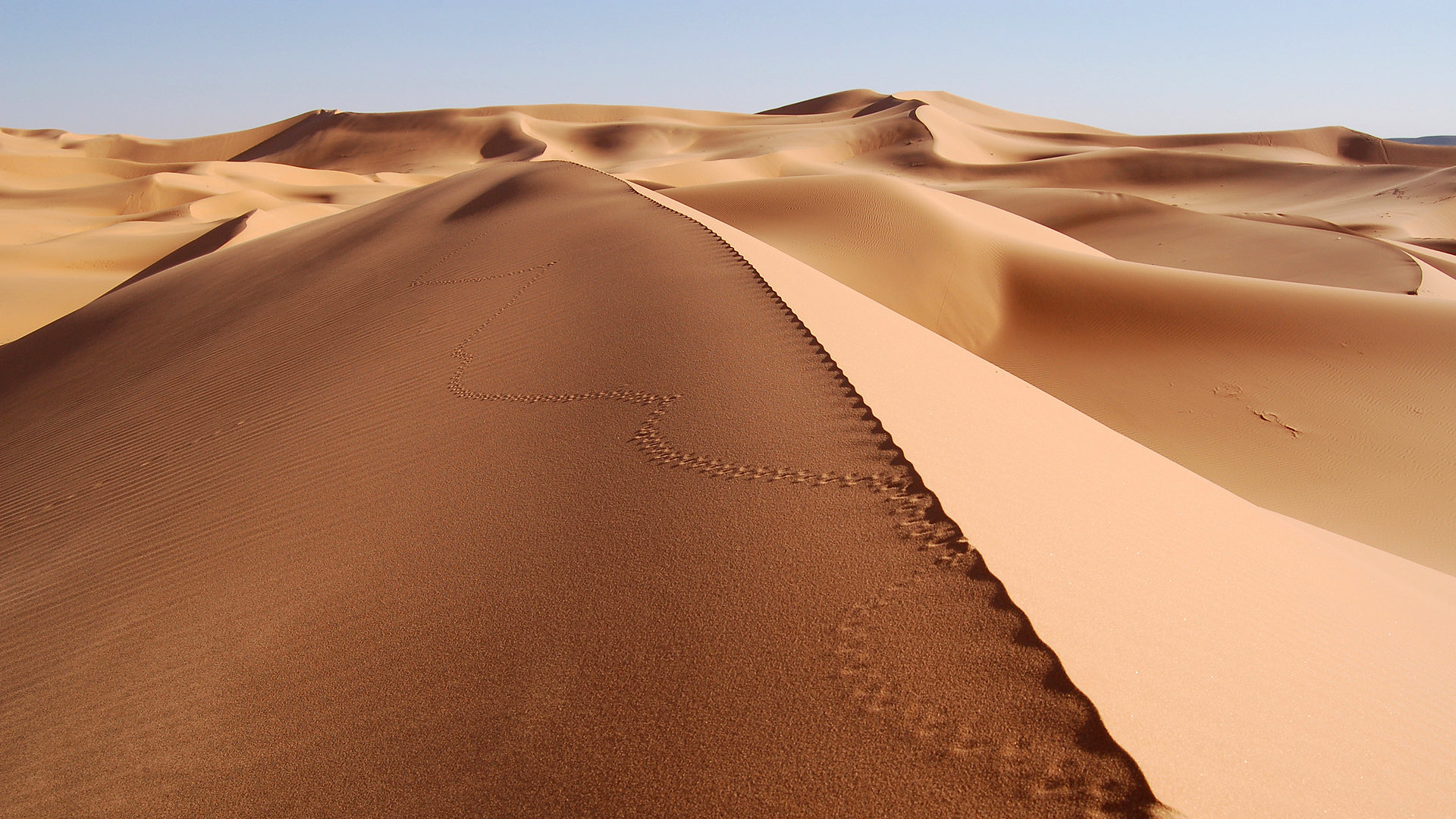 12375 download wallpaper Landscape, Sand, Desert screensavers and pictures for free