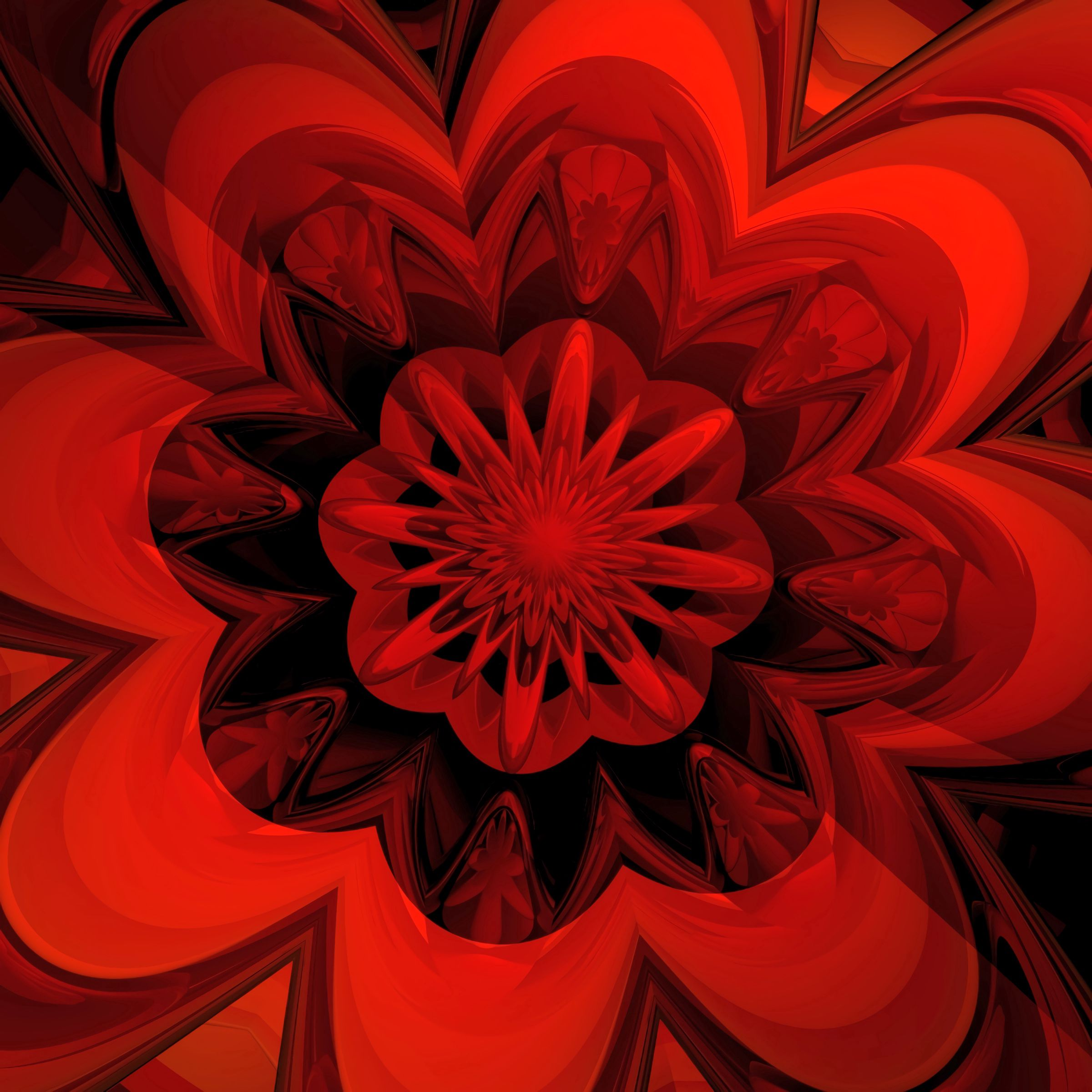 135076 download wallpaper Abstract, Fractal, Flower, Digital screensavers and pictures for free