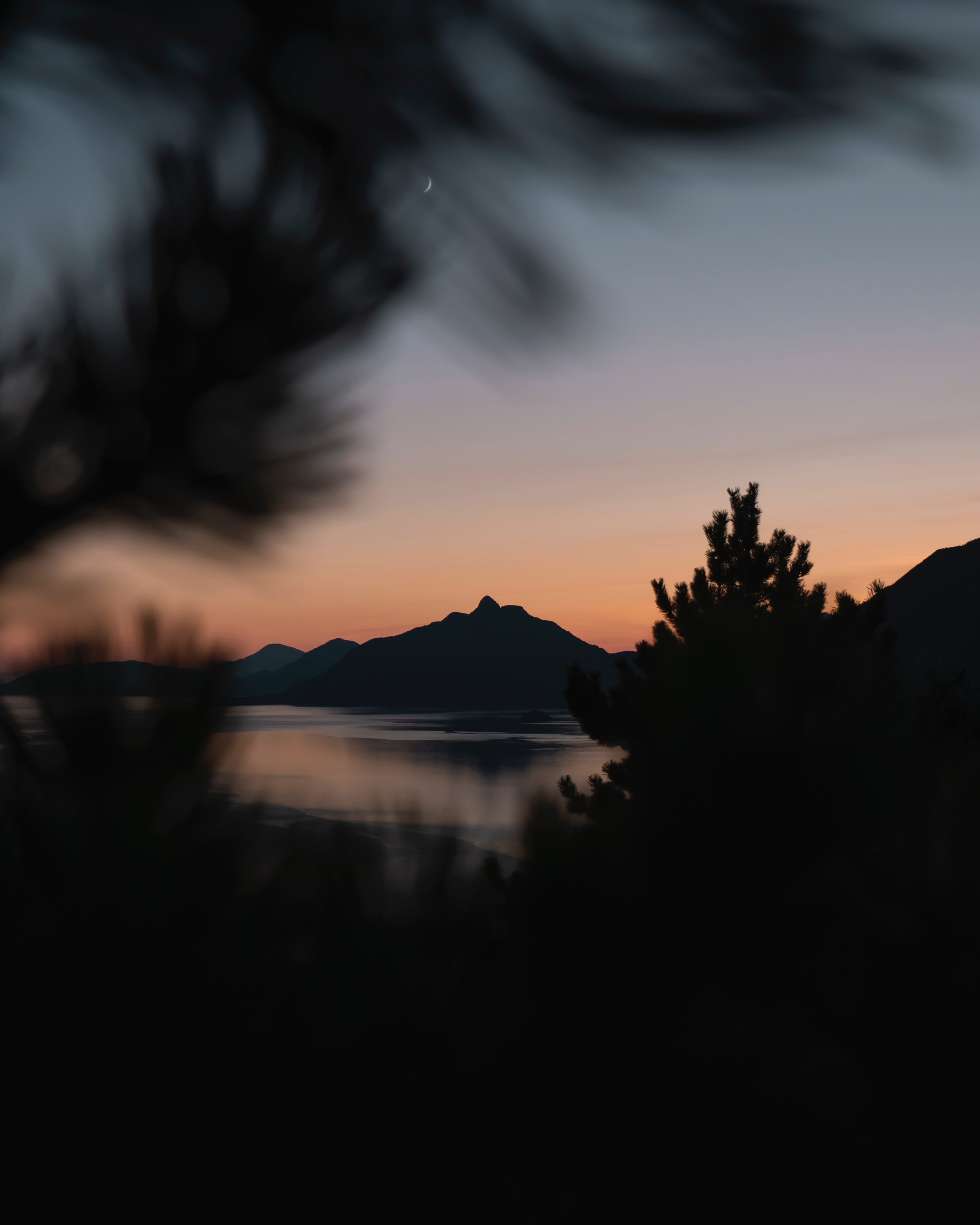 153083 download wallpaper Dark, Sunset, Mountains, Night, Blur, Smooth, Branches screensavers and pictures for free