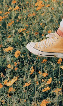 99214 скачать обои Разное, Кеды, Прогулка, Лето, Цветы - заставки и картинки бесплатно