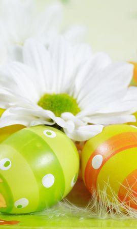 40732 descargar fondo de pantalla Vacaciones, Pascua: protectores de pantalla e imágenes gratis
