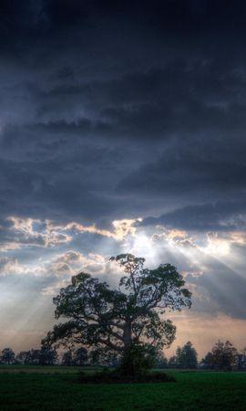 7081 скачать обои Пейзаж, Деревья, Небо, Артфото - заставки и картинки бесплатно