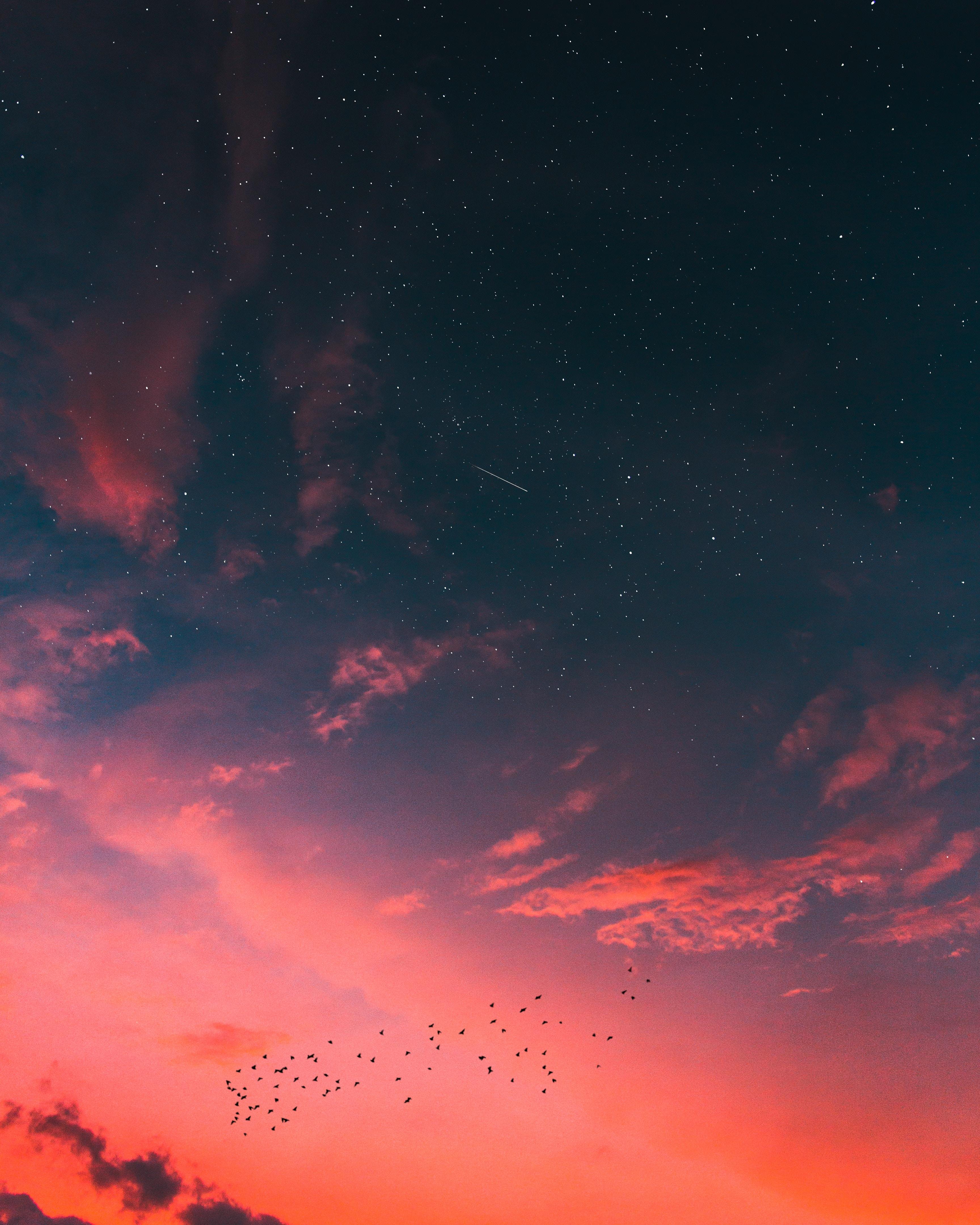 142868 descargar fondo de pantalla Naturaleza, Cielo Estrellado, Nubes, Puesta Del Sol: protectores de pantalla e imágenes gratis