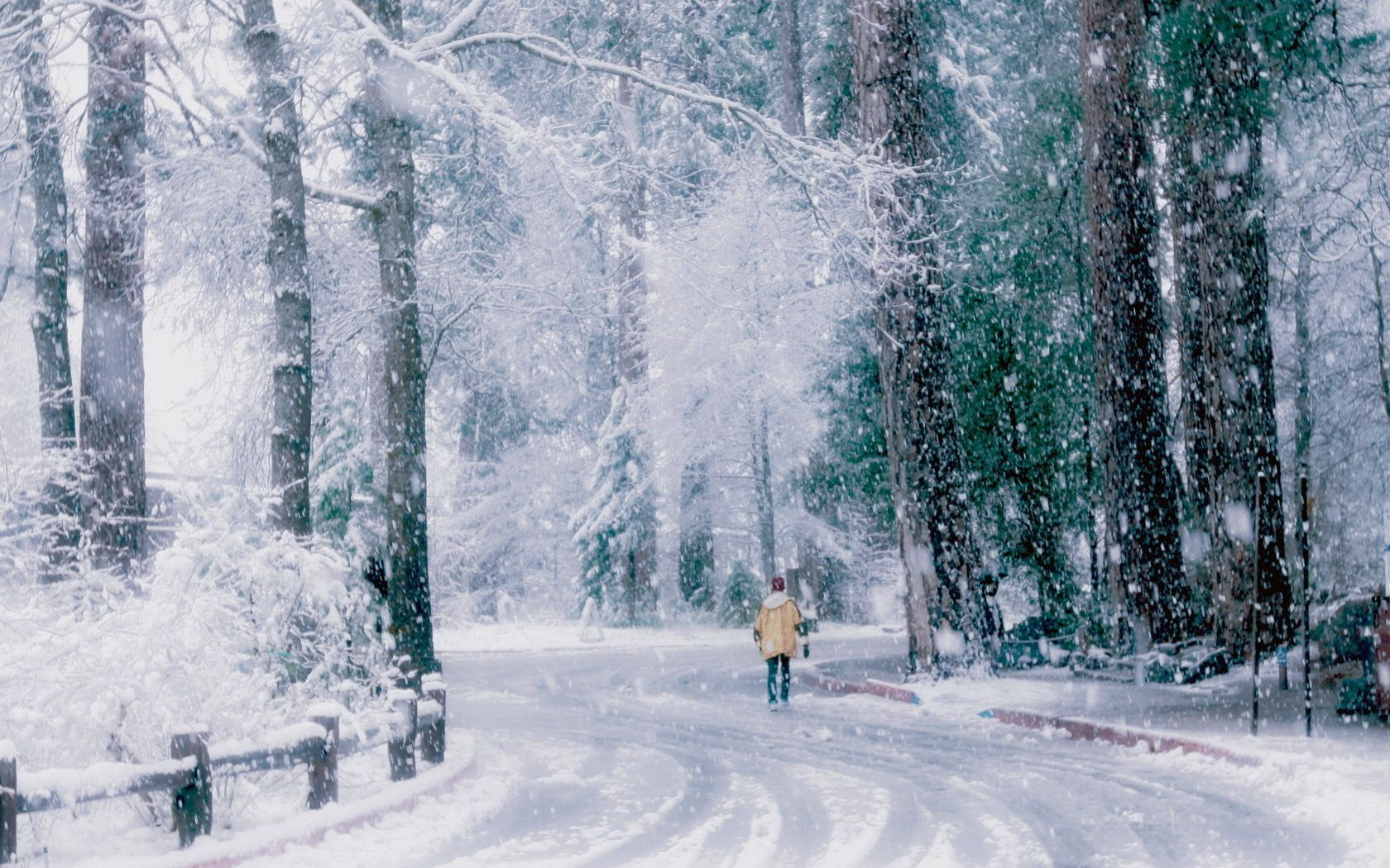 138686 download wallpaper Nature, Park, Snow, Stroll, Human, Person, Back, Painting, Art screensavers and pictures for free