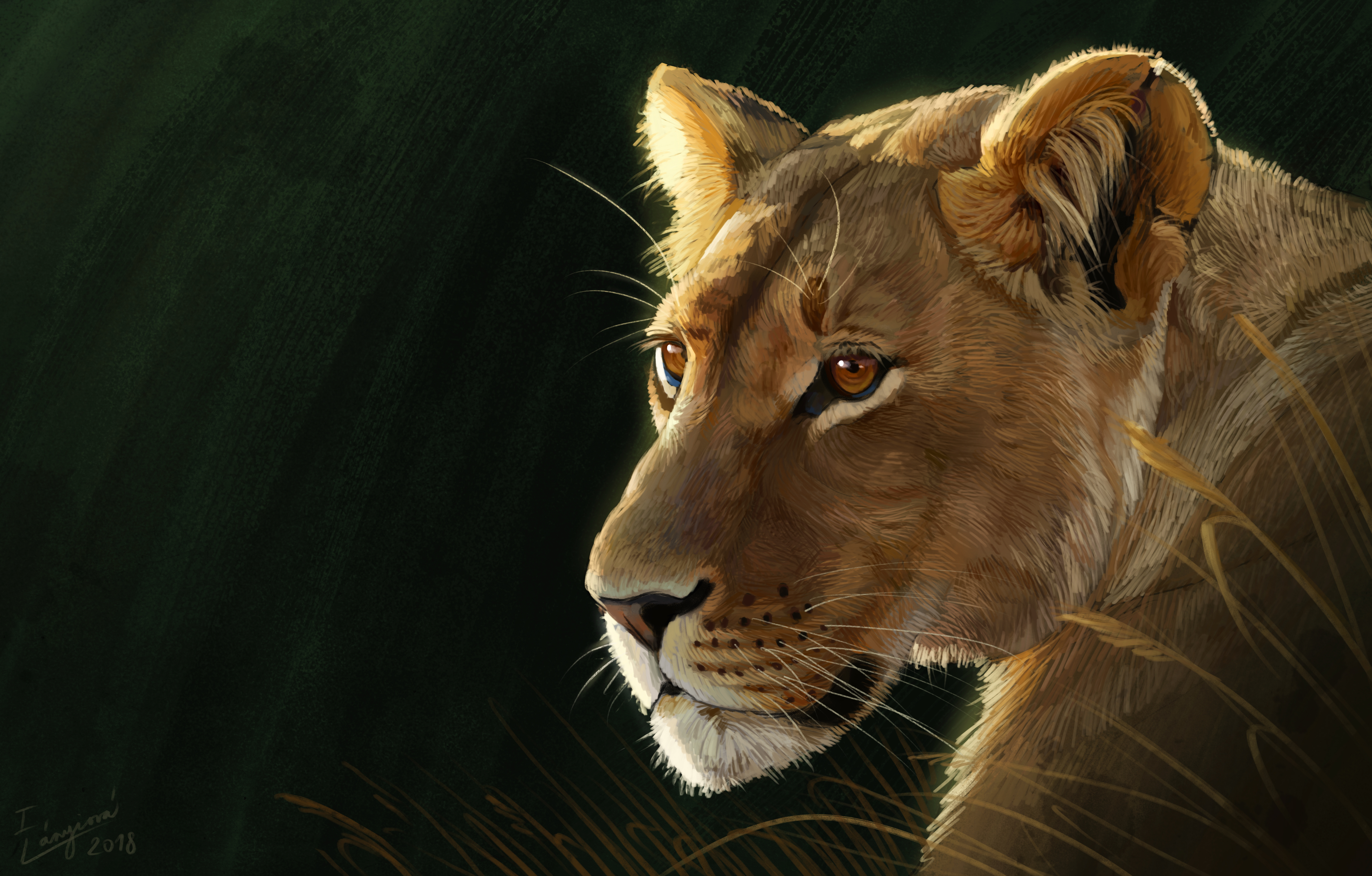 146191 download wallpaper Lioness, Big Cat, Predator, Sight, Opinion, Art screensavers and pictures for free