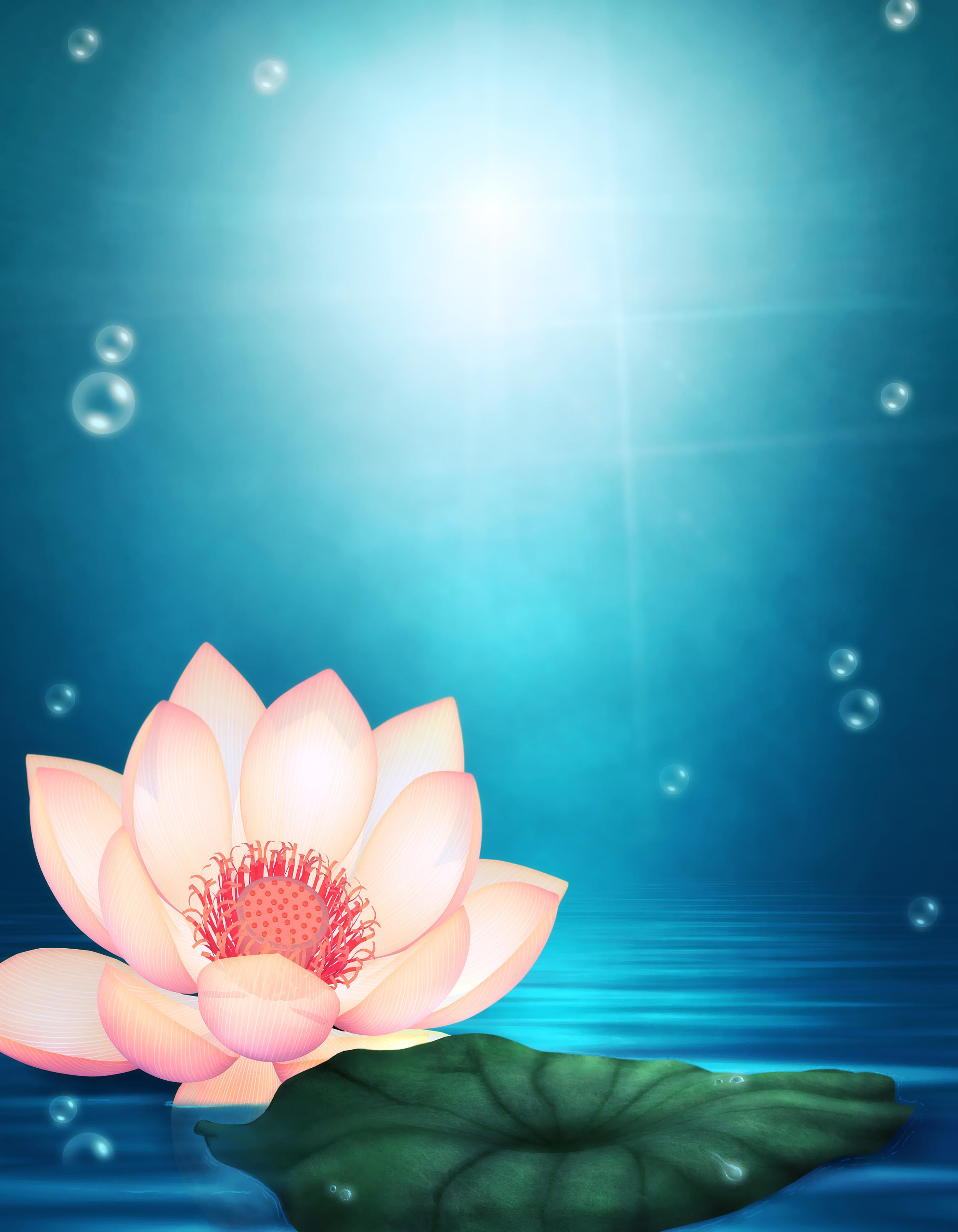 12715 télécharger le fond d'écran Fleurs, Lilies, Dessins - économiseurs d'écran et images gratuitement