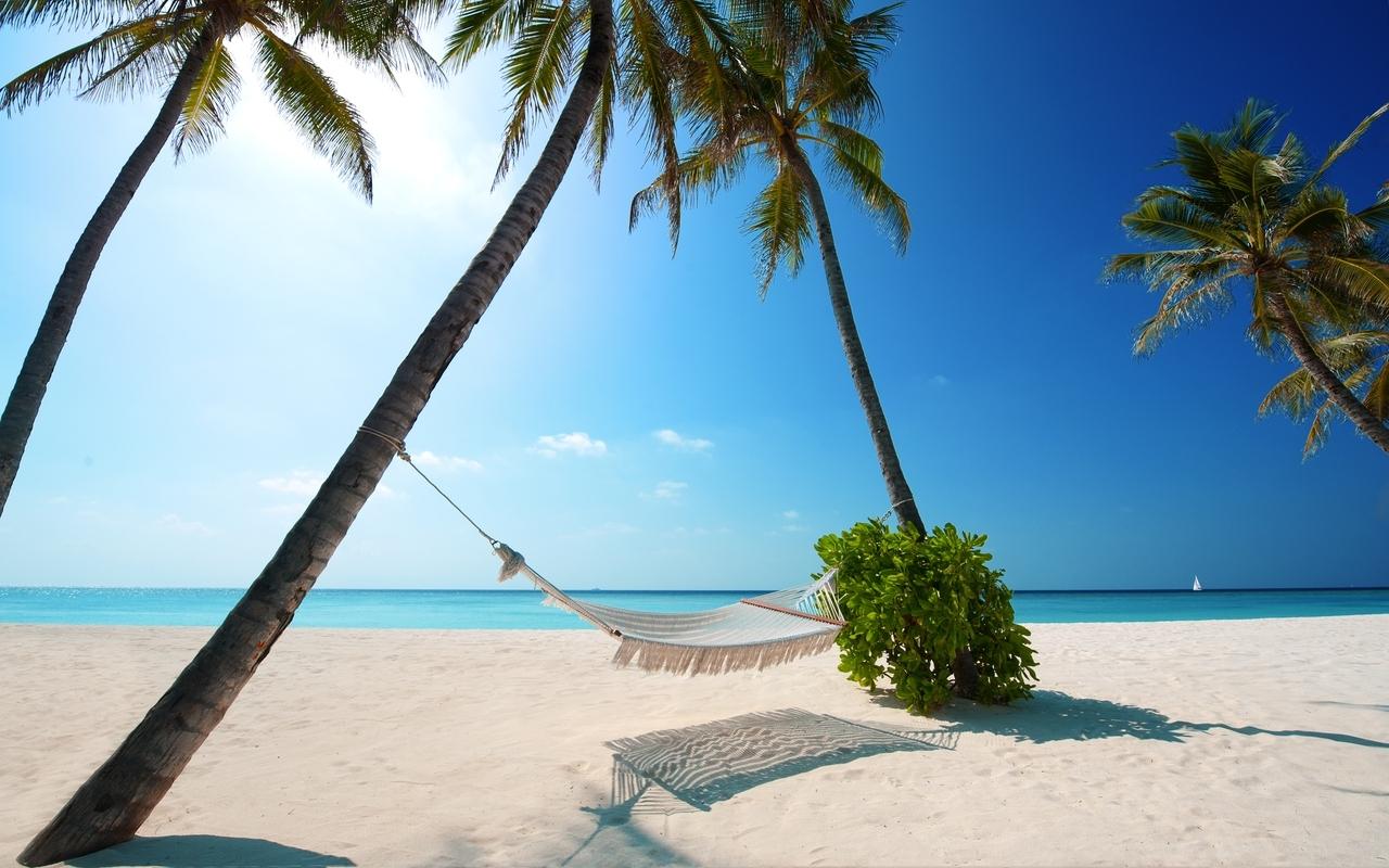 Скачать картинку Пляж, Пальмы, Пейзаж в телефон бесплатно.