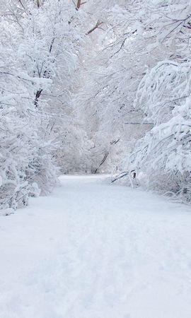 13166 скачать обои Пейзаж, Зима, Снег - заставки и картинки бесплатно