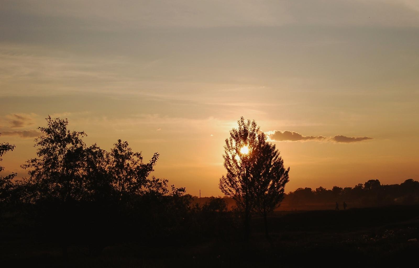 3049 скачать обои Пейзаж, Деревья, Закат, Небо, Солнце - заставки и картинки бесплатно