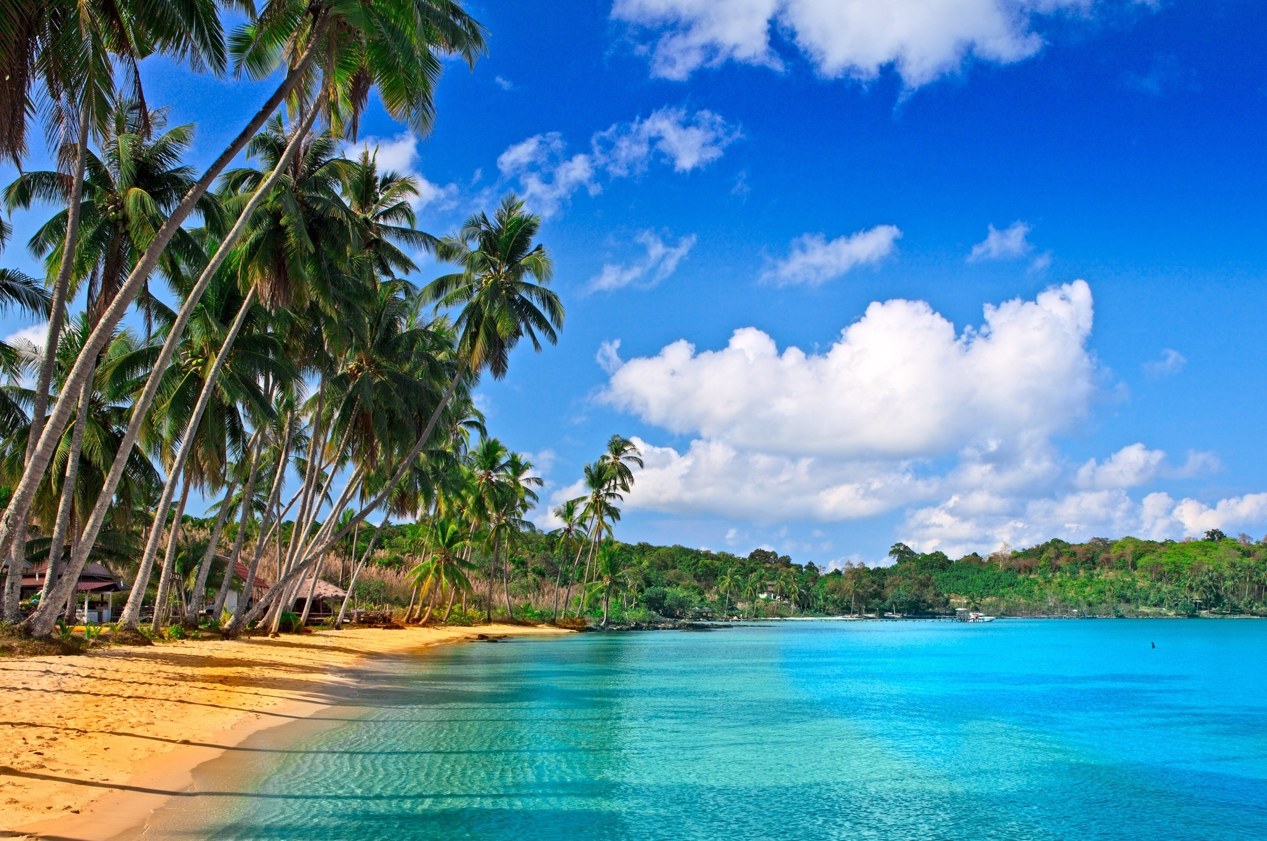 19718 download wallpaper Landscape, Sky, Sea, Clouds, Beach, Palms screensavers and pictures for free