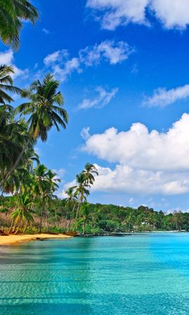 19718 descargar fondo de pantalla Paisaje, Cielo, Mar, Nubes, Playa, Palms: protectores de pantalla e imágenes gratis