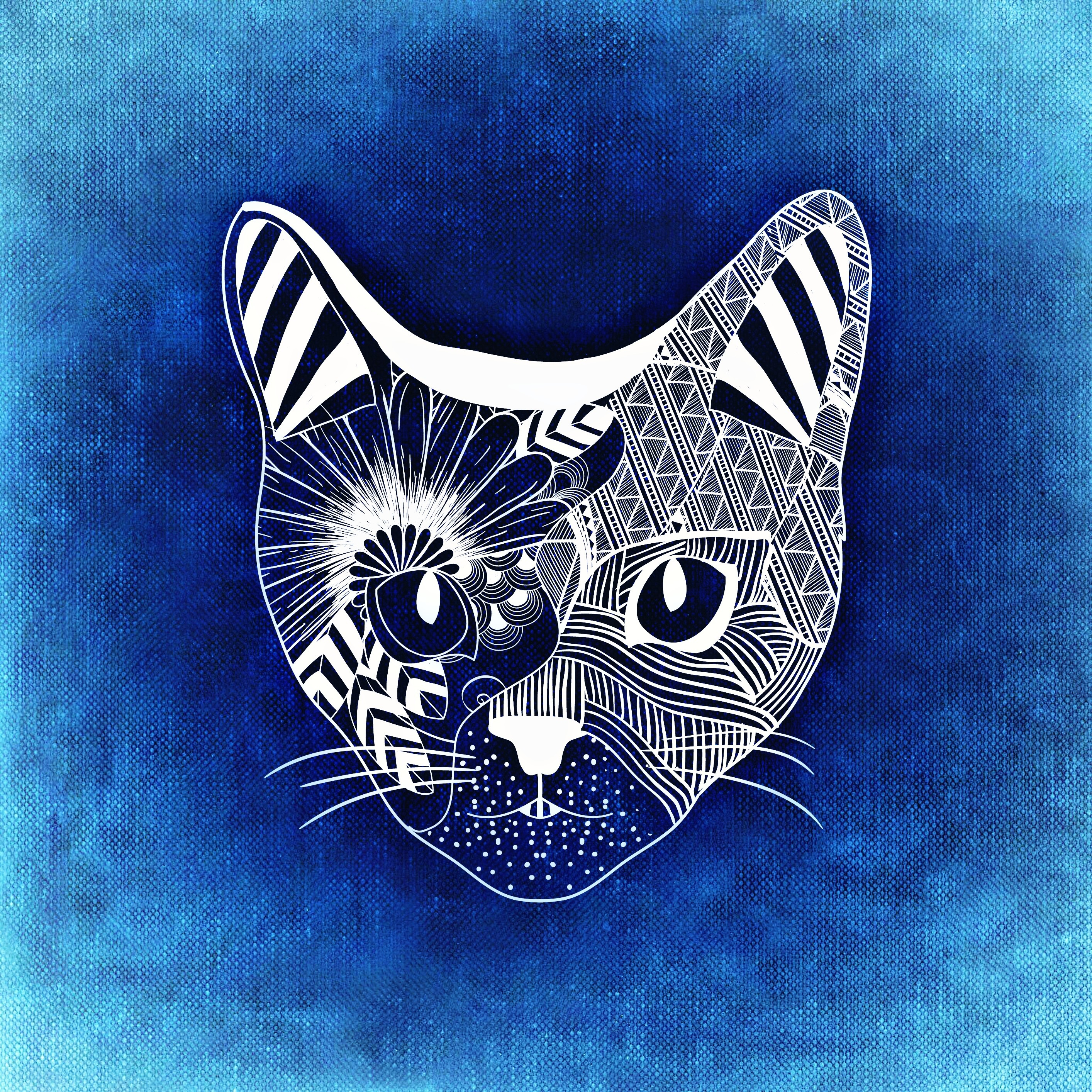 141254 download wallpaper Cat, Art, Muzzle, Patterns screensavers and pictures for free