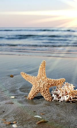 14624 скачать обои Фон, Море, Солнце, Пляж - заставки и картинки бесплатно