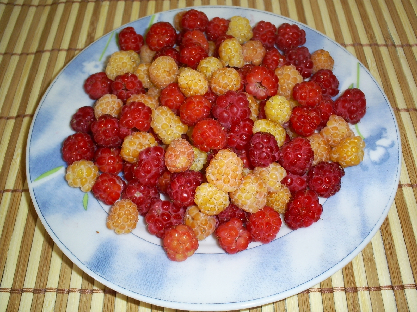 1259 download wallpaper Fruits, Food, Raspberry, Berries screensavers and pictures for free