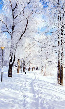 26355 скачать обои Пейзаж, Зима, Деревья, Дороги, Снег - заставки и картинки бесплатно