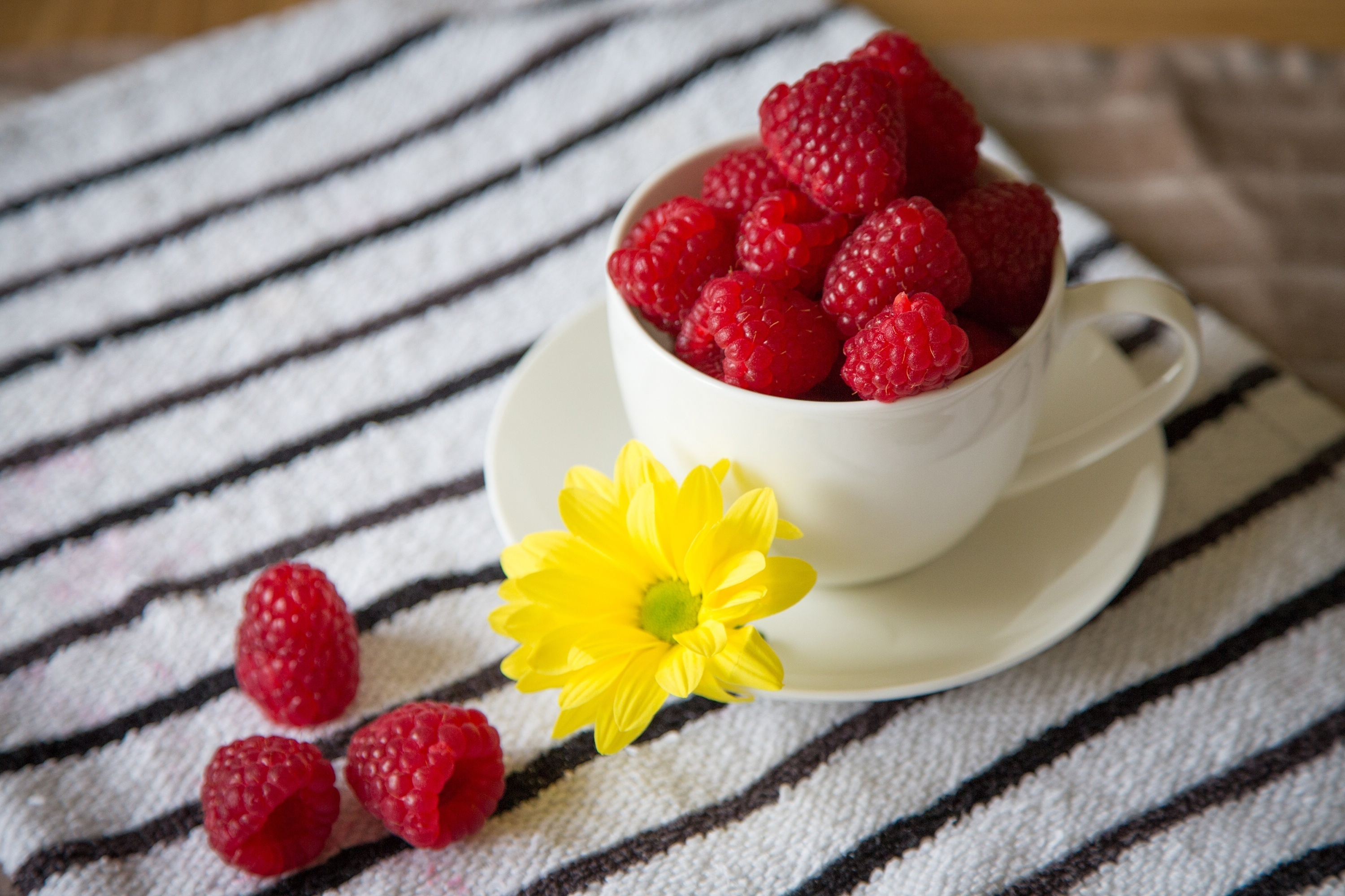 22893 download wallpaper Fruits, Food, Cups, Raspberry, Berries screensavers and pictures for free