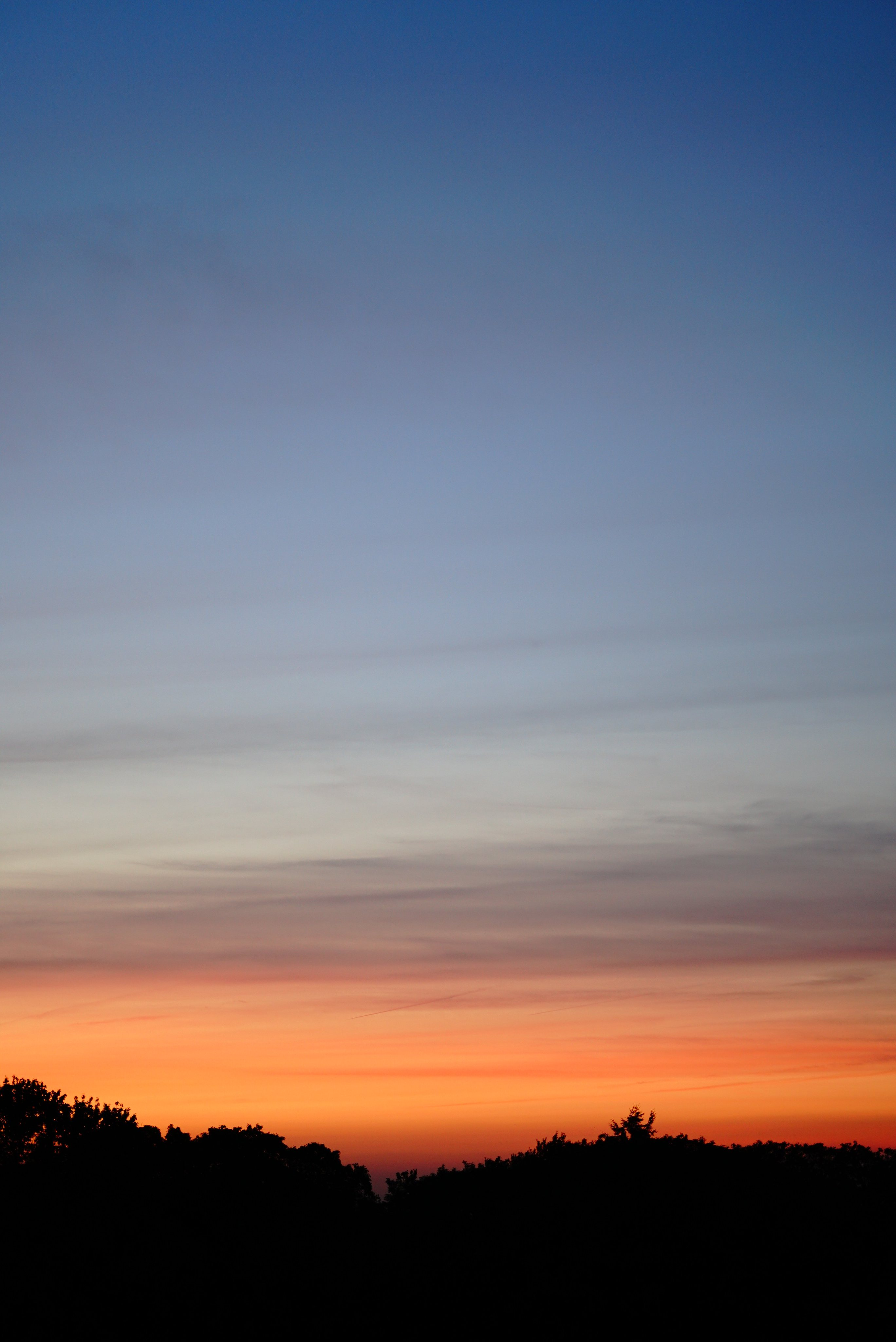 144221 download wallpaper Nature, Sunset, Dusk, Twilight, Trees, Silhouette, Night screensavers and pictures for free