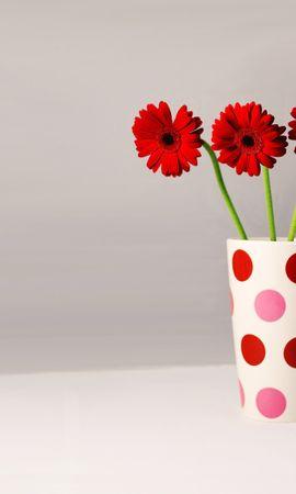 39576 télécharger le fond d'écran Plantes, Fleurs, Bouquets - économiseurs d'écran et images gratuitement