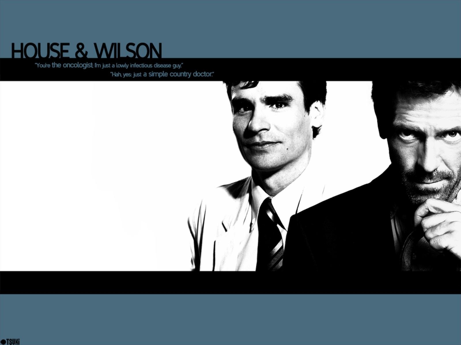 1287 download wallpaper Cinema, People, Men, House M.d., Hugh Laurie, Robert Sean Leonard screensavers and pictures for free