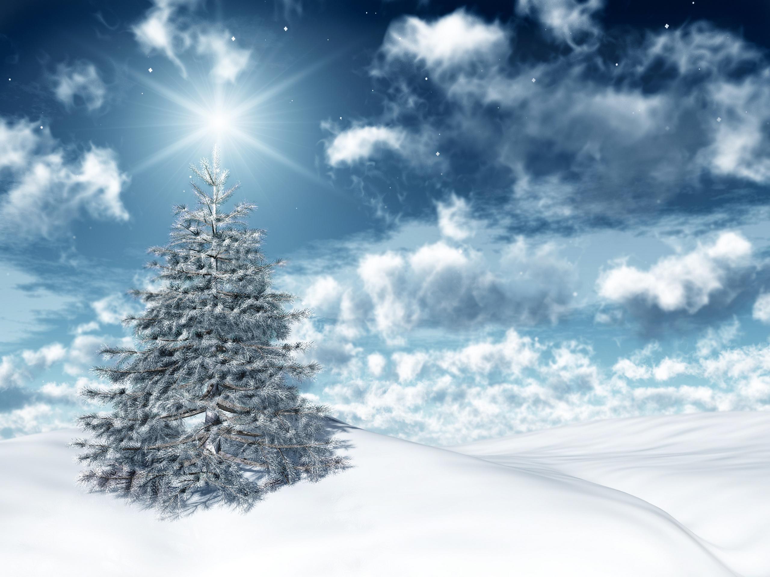14087 скачать обои Праздники, Зима, Звезды, Новый Год (New Year), Елки, Рождество (Christmas, Xmas) - заставки и картинки бесплатно