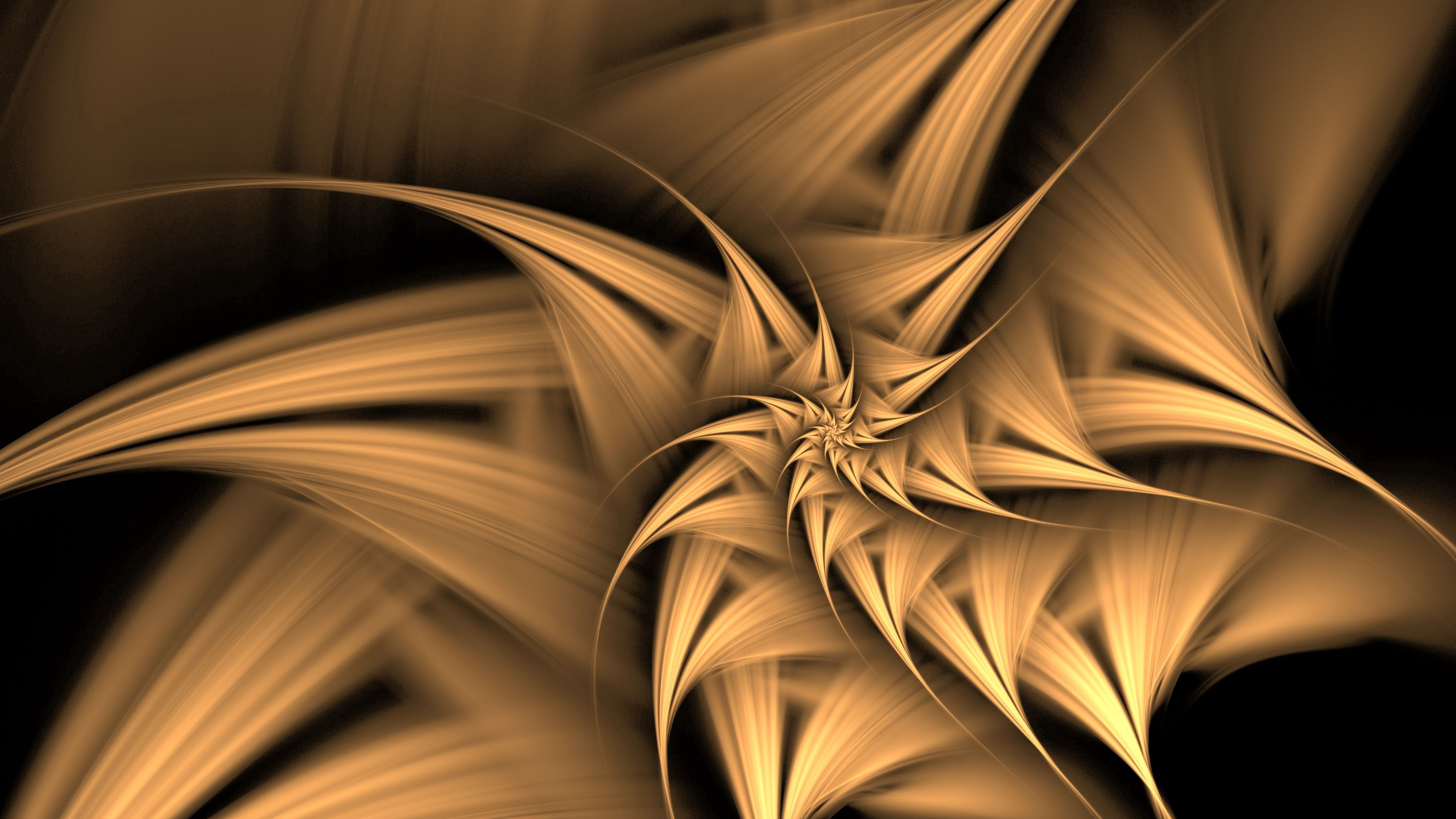 79164 download wallpaper Abstract, Fractal, Swirling, Involute, Pointed, Digital screensavers and pictures for free