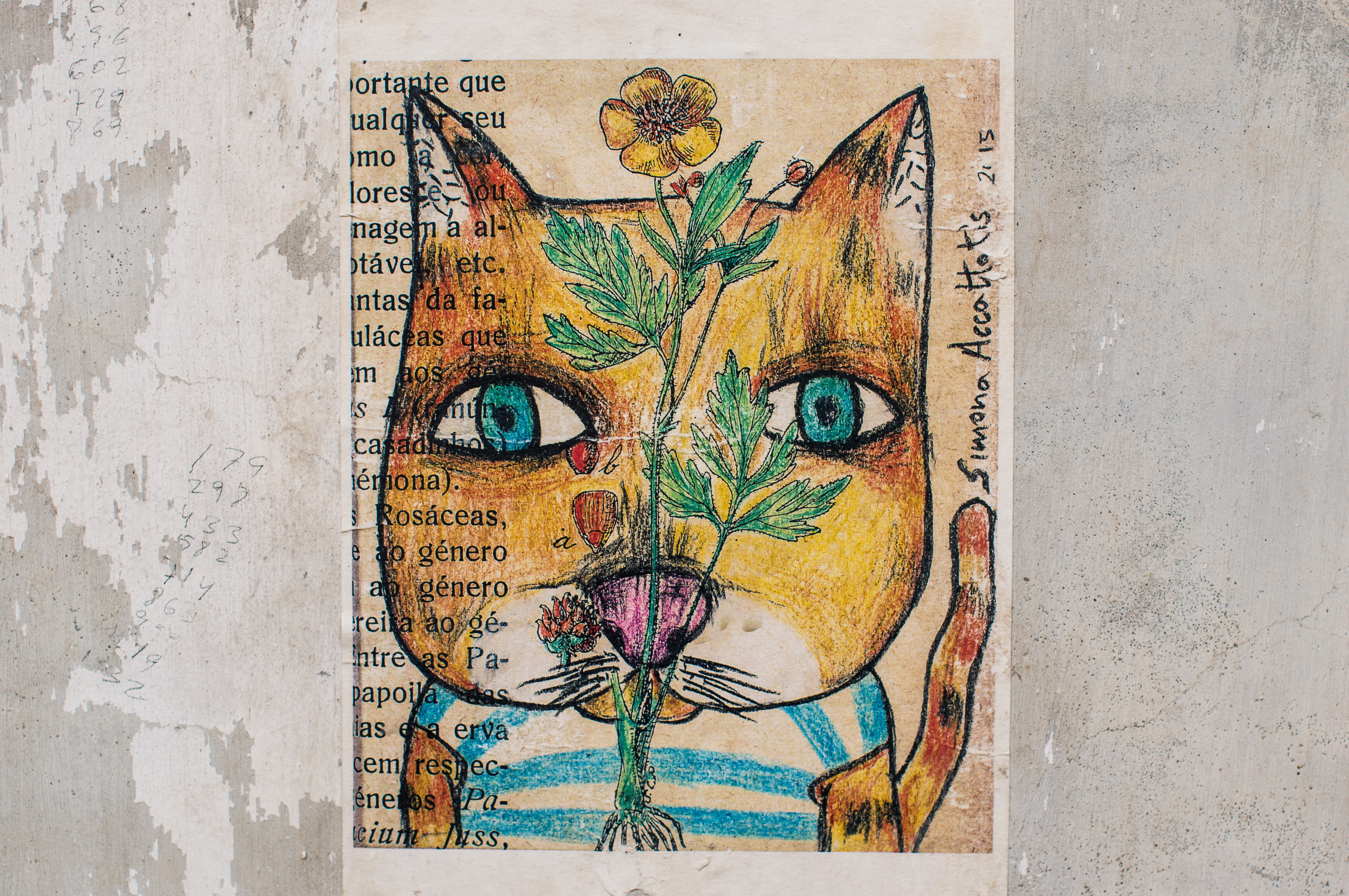 151570 Screensavers and Wallpapers Picture for phone. Download Art, Cat, Picture, Drawing, Paper pictures for free