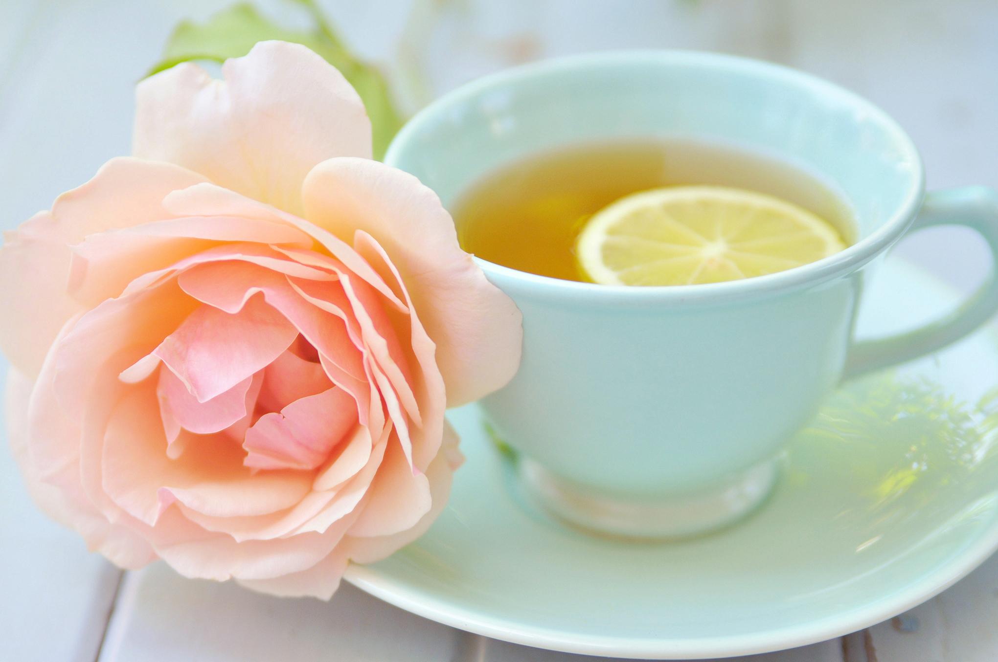 66189 Hintergrundbild herunterladen Lebensmittel, Rose, Eine Tasse, Tasse, Zitrone, Tee - Bildschirmschoner und Bilder kostenlos