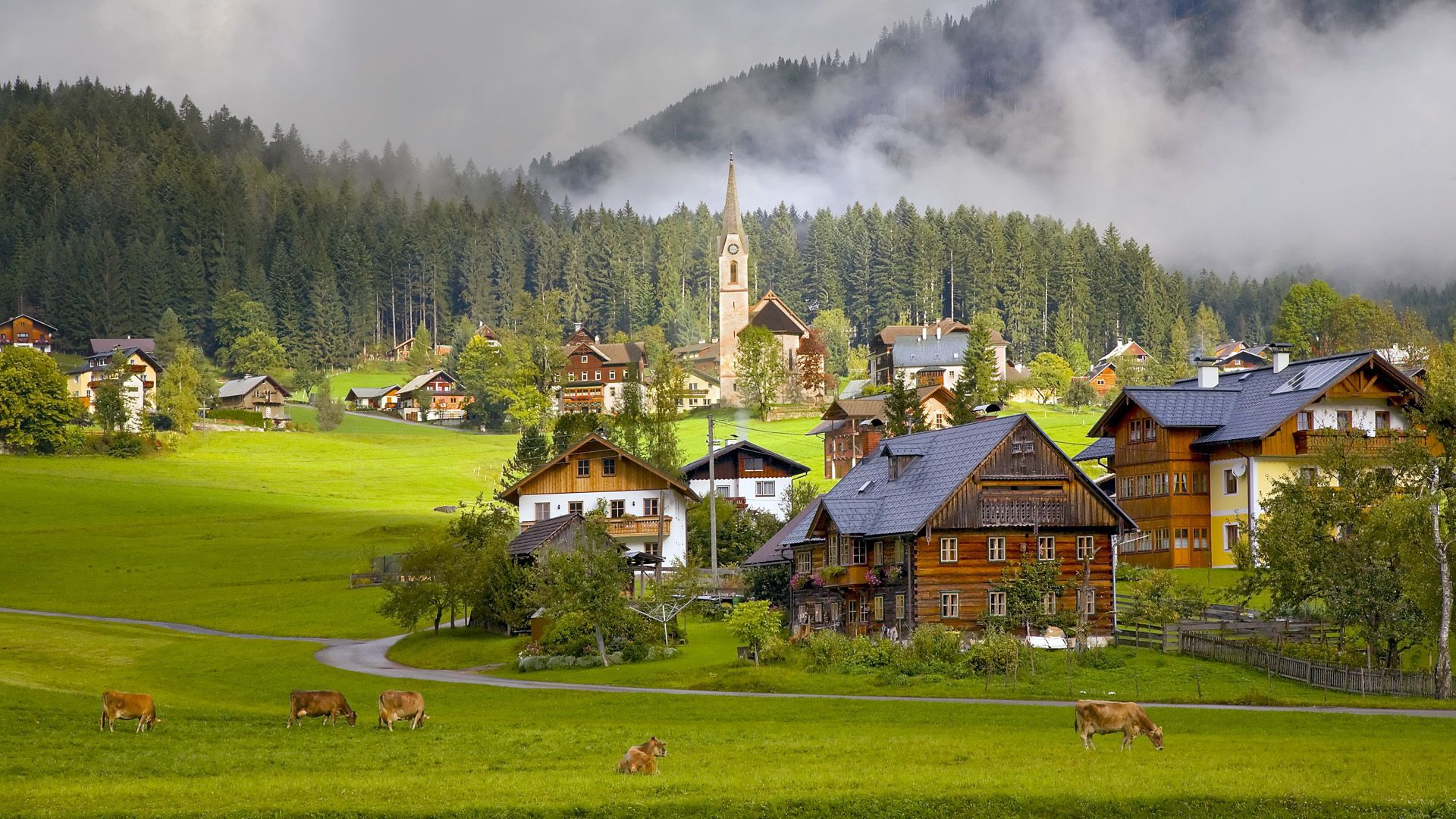 55691 download wallpaper Cities, Houses, Cows, Austria, Village, Gosau, Gozau screensavers and pictures for free