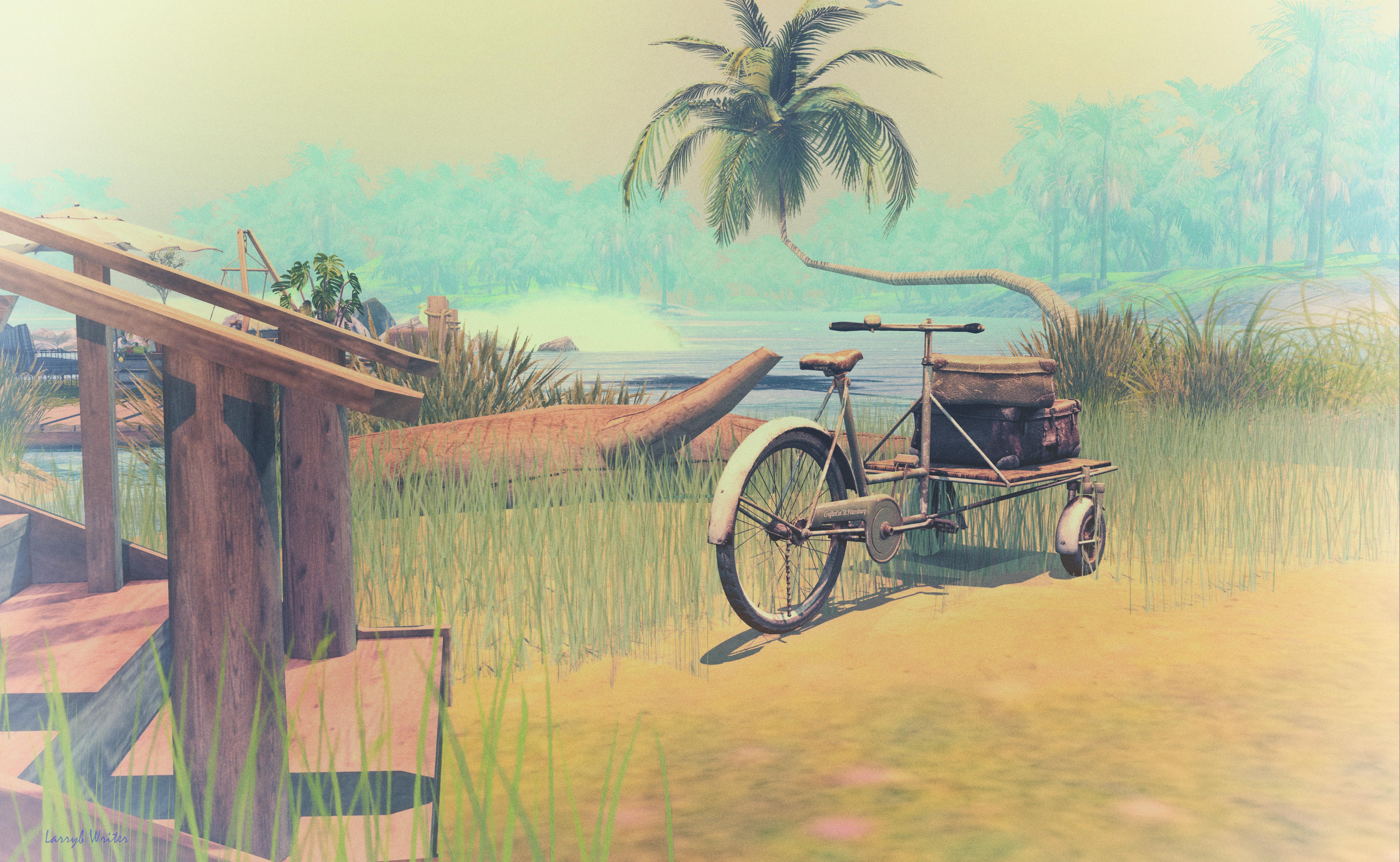 74069 Hintergrundbild herunterladen Grass, Kunst, Strand, Palme, Palm, Fahrrad, Rad, Lagune - Bildschirmschoner und Bilder kostenlos