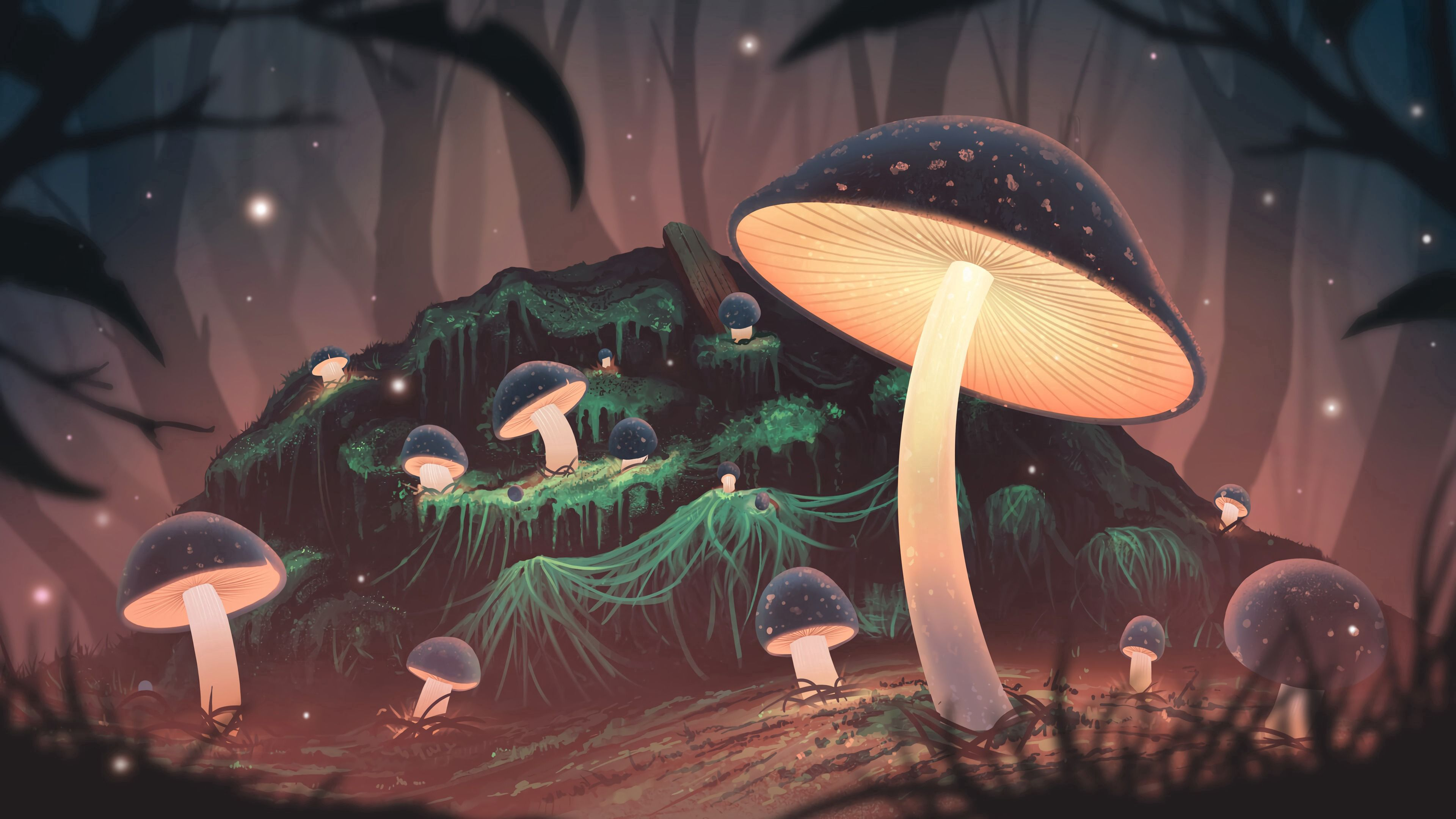 157849 download wallpaper Art, Mashrooms, Shine, Light, Forest, Glow screensavers and pictures for free