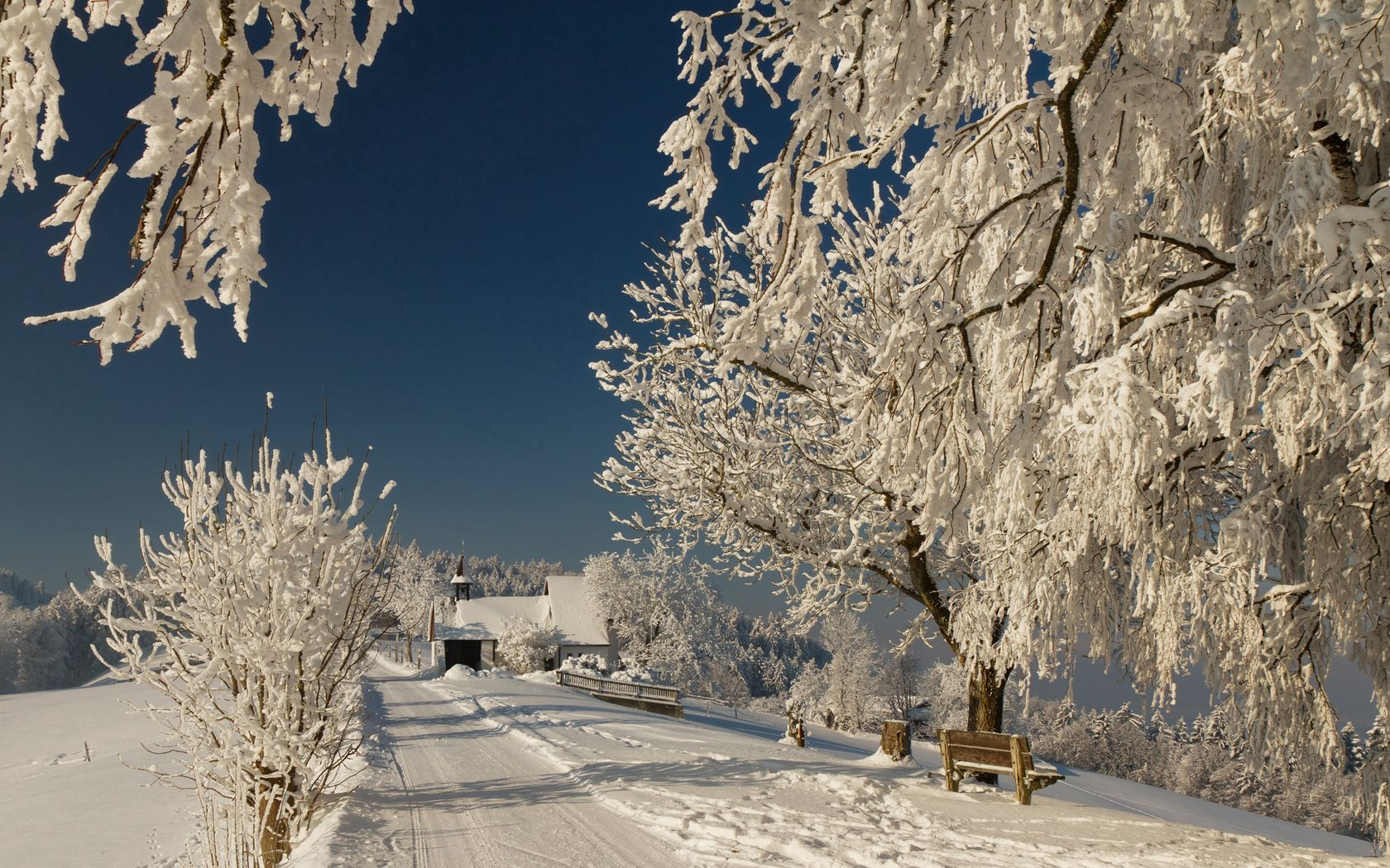 72640 Screensavers and Wallpapers Bench for phone. Download Winter, Nature, Road, Branches, Branch, Frost, Hoarfrost, Bench, Sunny pictures for free