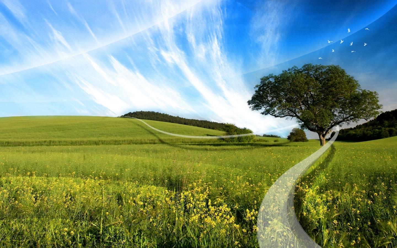 3513 скачать обои Пейзаж, Деревья, Трава, Небо - заставки и картинки бесплатно
