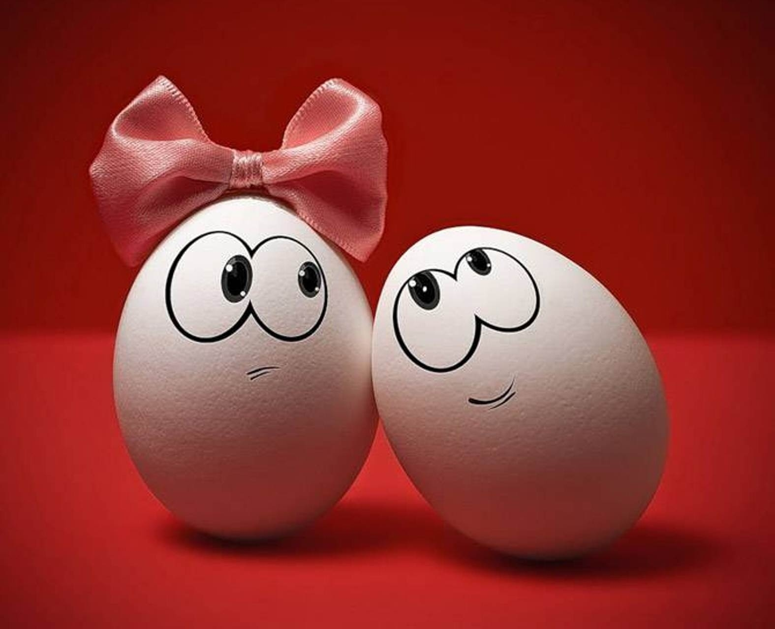 88762 Screensavers and Wallpapers Emotions for phone. Download Eggs, Miscellanea, Miscellaneous, Couple, Pair, Bow, Emotions pictures for free