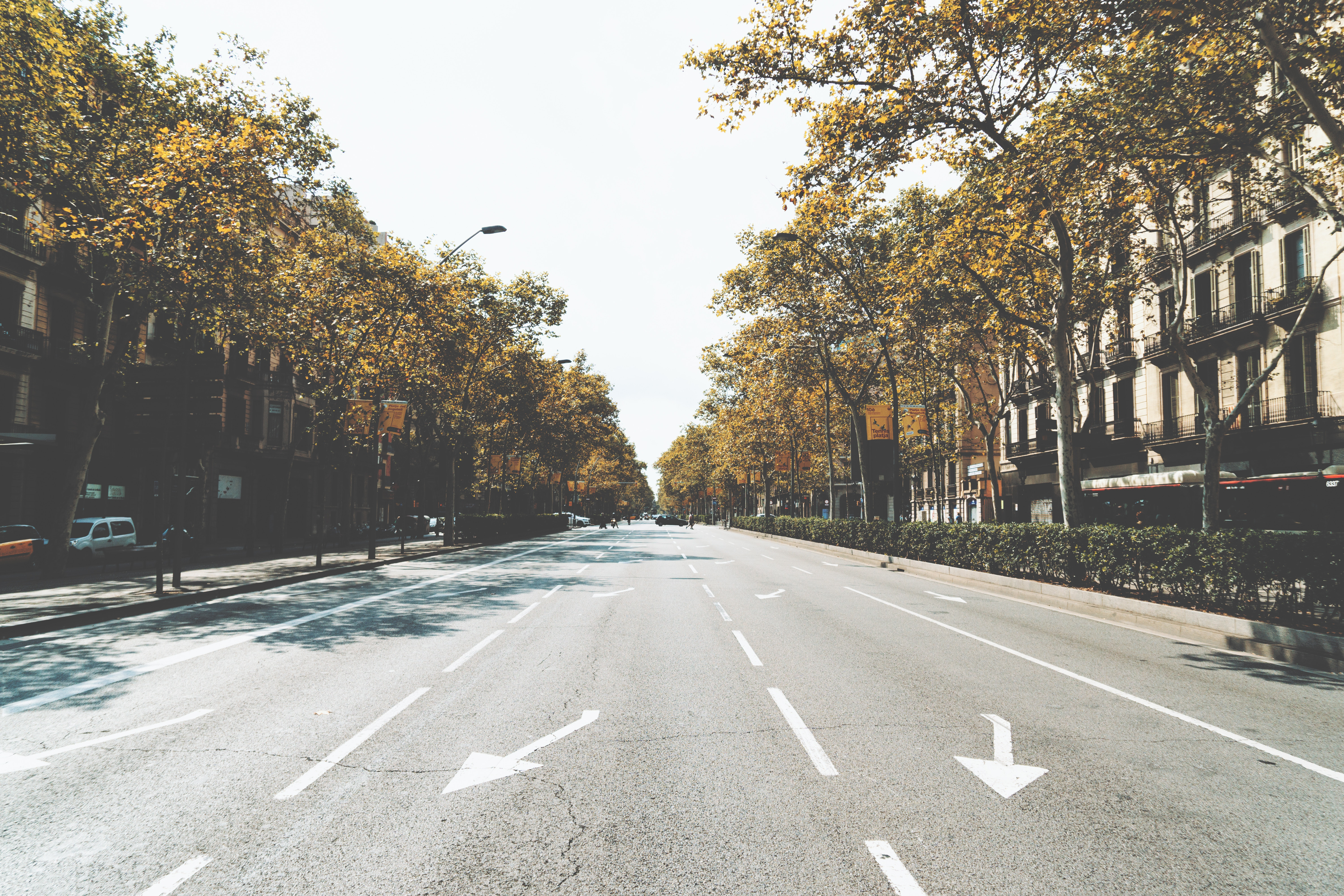 131113 Screensavers and Wallpapers Street for phone. Download Cities, City, Road, Markup, Street pictures for free