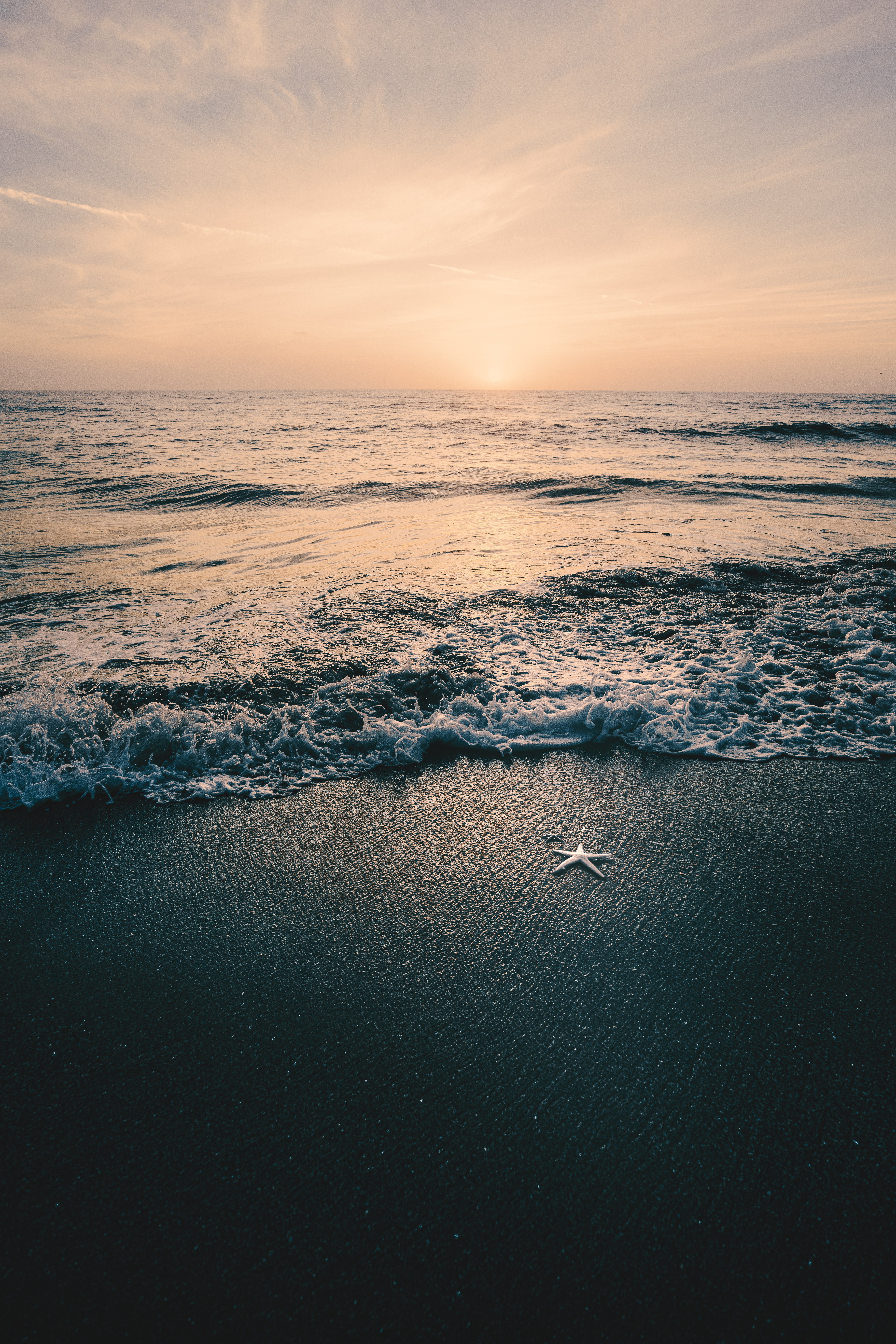 71532 download wallpaper Nature, Sea, Beach, Starfish, Dusk, Twilight, Waves screensavers and pictures for free
