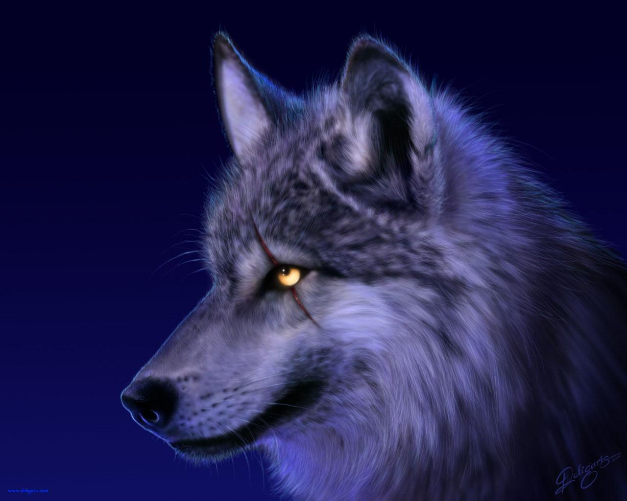 10272 скачать обои Волки, Животные - заставки и картинки бесплатно