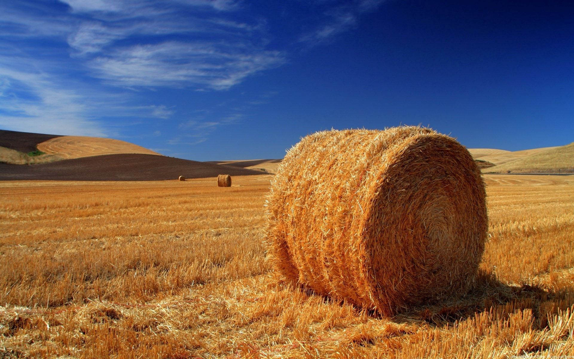 58049 Screensavers and Wallpapers Agriculture for phone. Download Nature, Field, Hay, Straw, Bale, Agriculture pictures for free