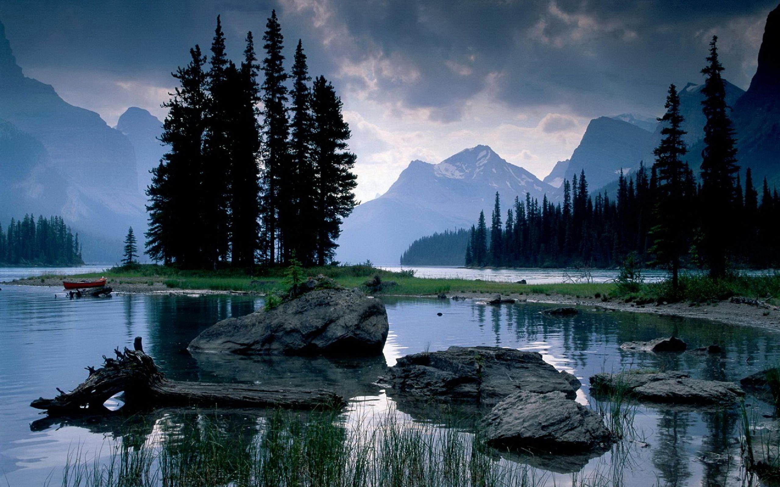 62568 télécharger le fond d'écran Bois, Rivières, Nature, Noyaux, Arbre - économiseurs d'écran et images gratuitement