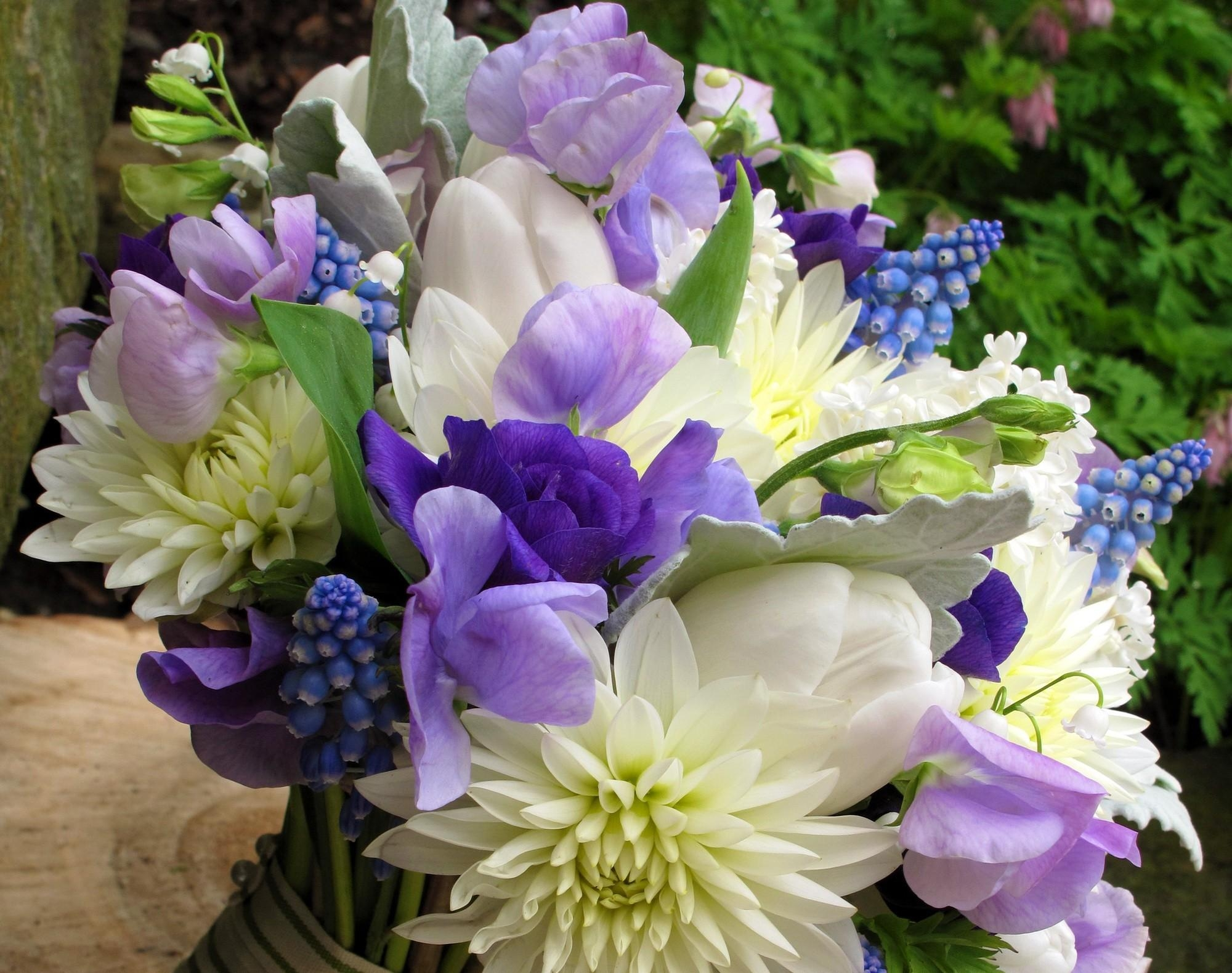 149472 скачать обои Цветы, Букет, Мускари, Весна, Хризантемы, Ландыши - заставки и картинки бесплатно