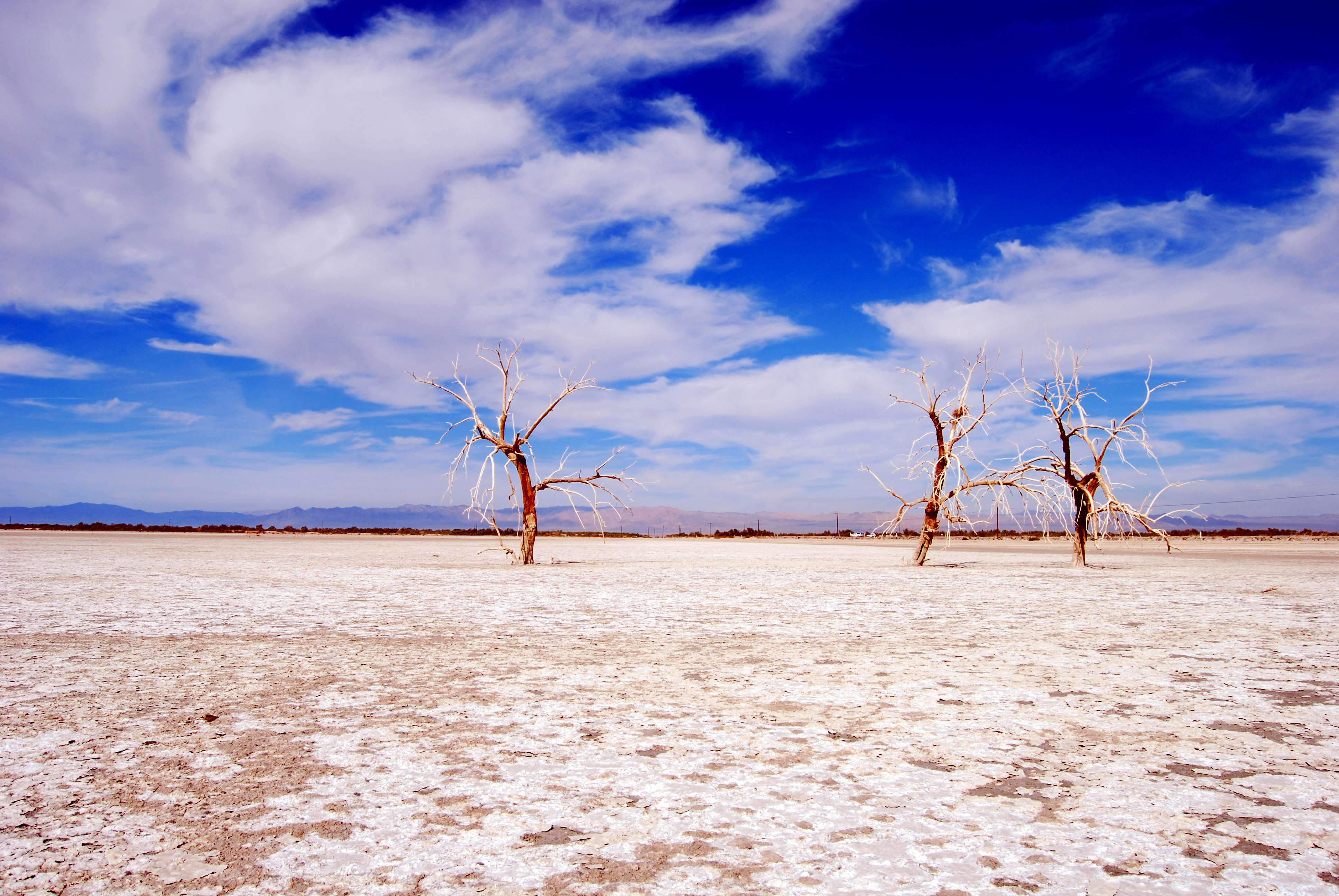 122854 download wallpaper Nature, Trees, Branches, Sky, Clouds, Dry Lake, Desert screensavers and pictures for free